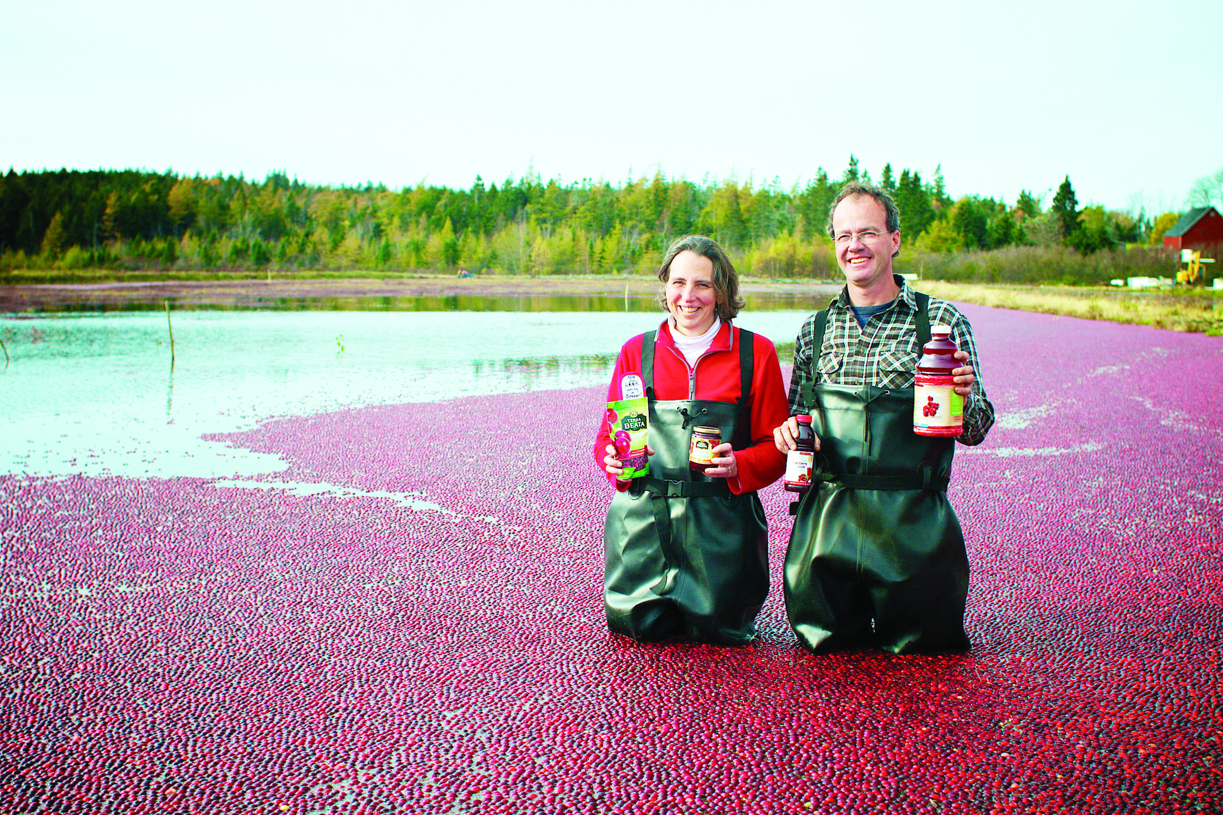 Terra Beata is beating the bushes for new cranberry markets David and Evelyn Ernst in the cranberry bog with a few of their retail products. (Doug Townsend photo)