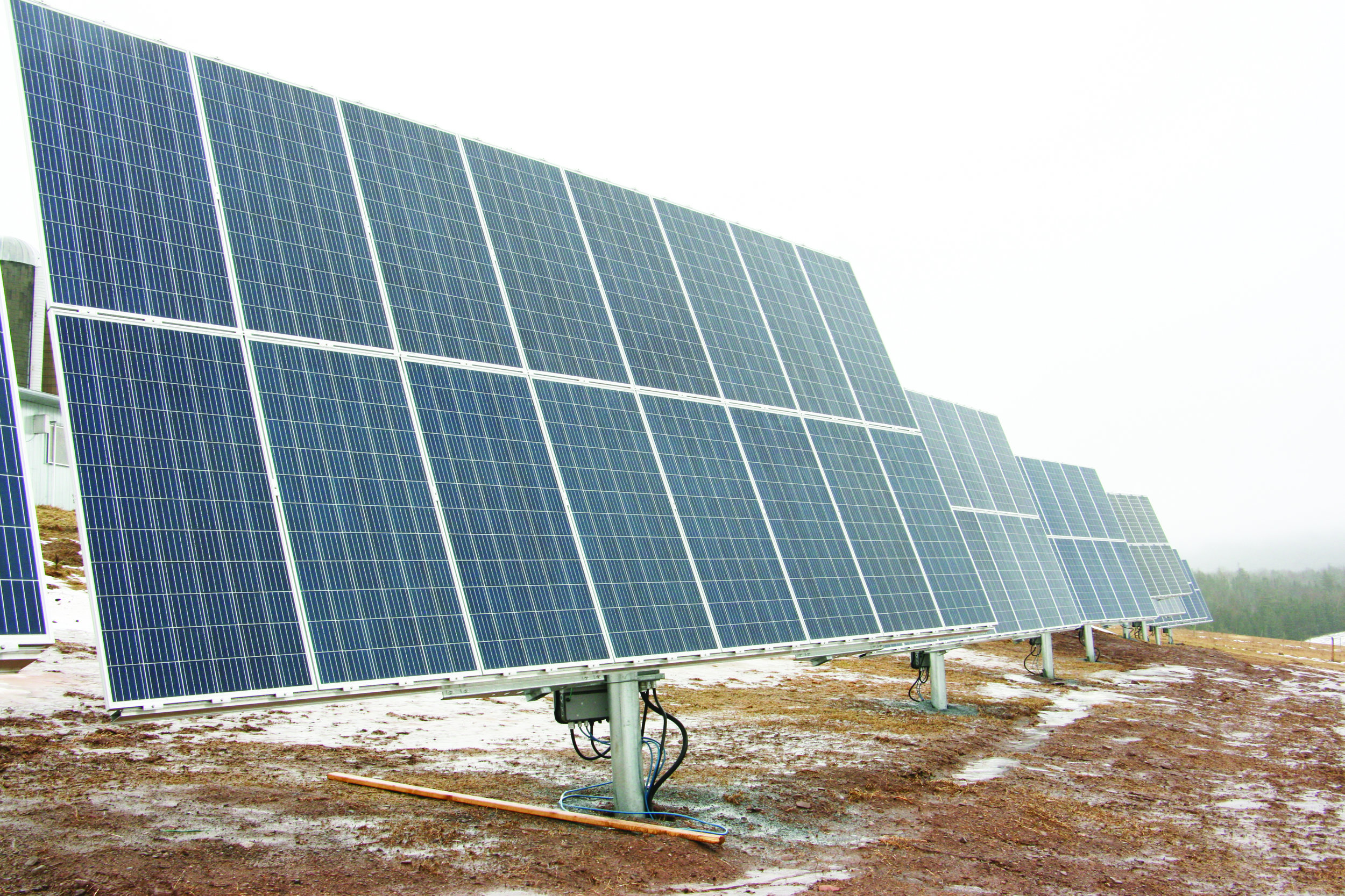The first phase of the Auenland Farm project has 350 solar panels collecting the sun's energy. (George Fullerton photo)