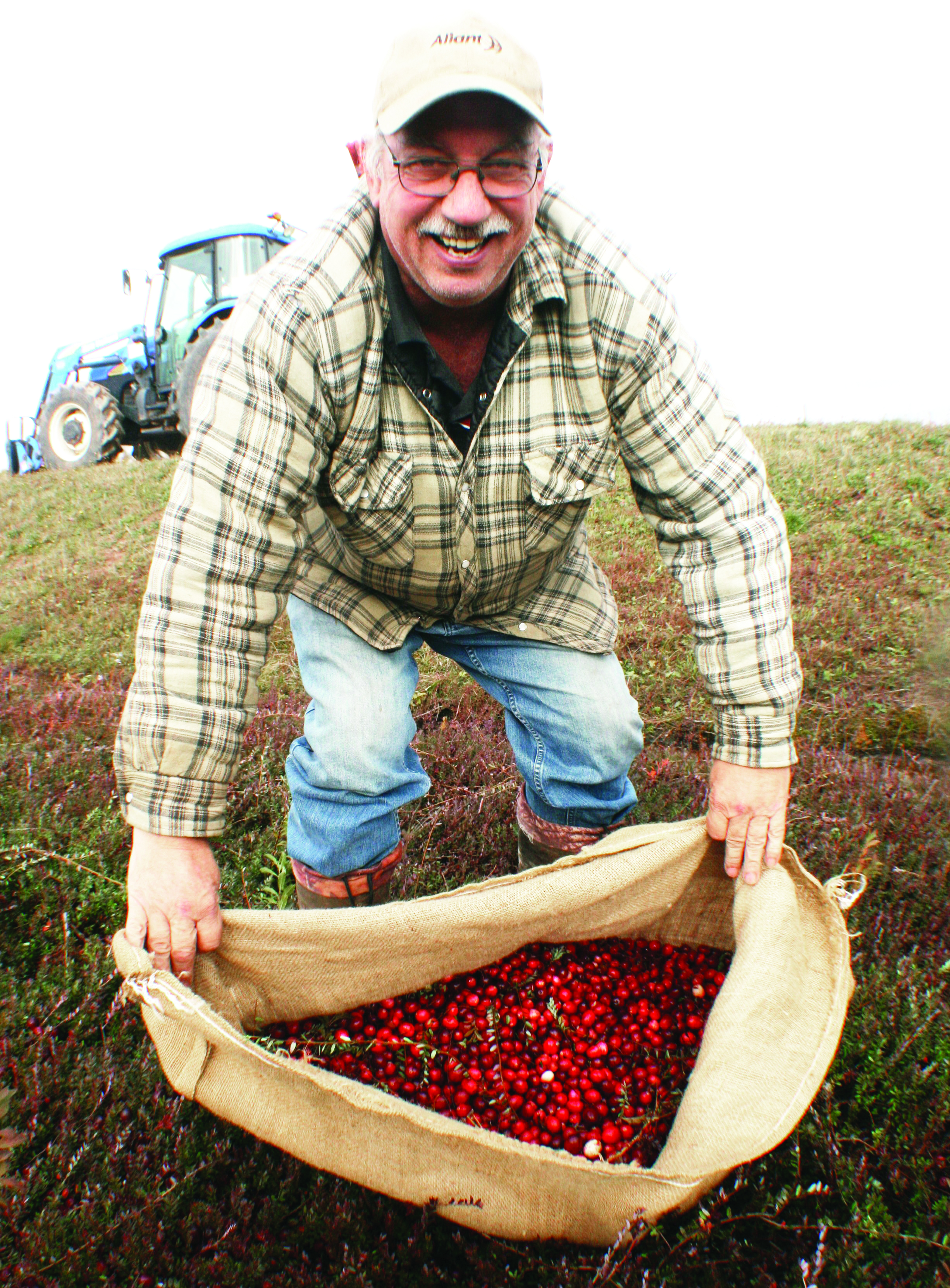 Melvin Goodland with a burlap bag full of bright red cranberries. The cranberries are harvested with self-propelled machines, with large burlap bags placed on the back of the machines to catch the berries. (Joan LeBlanc photos)