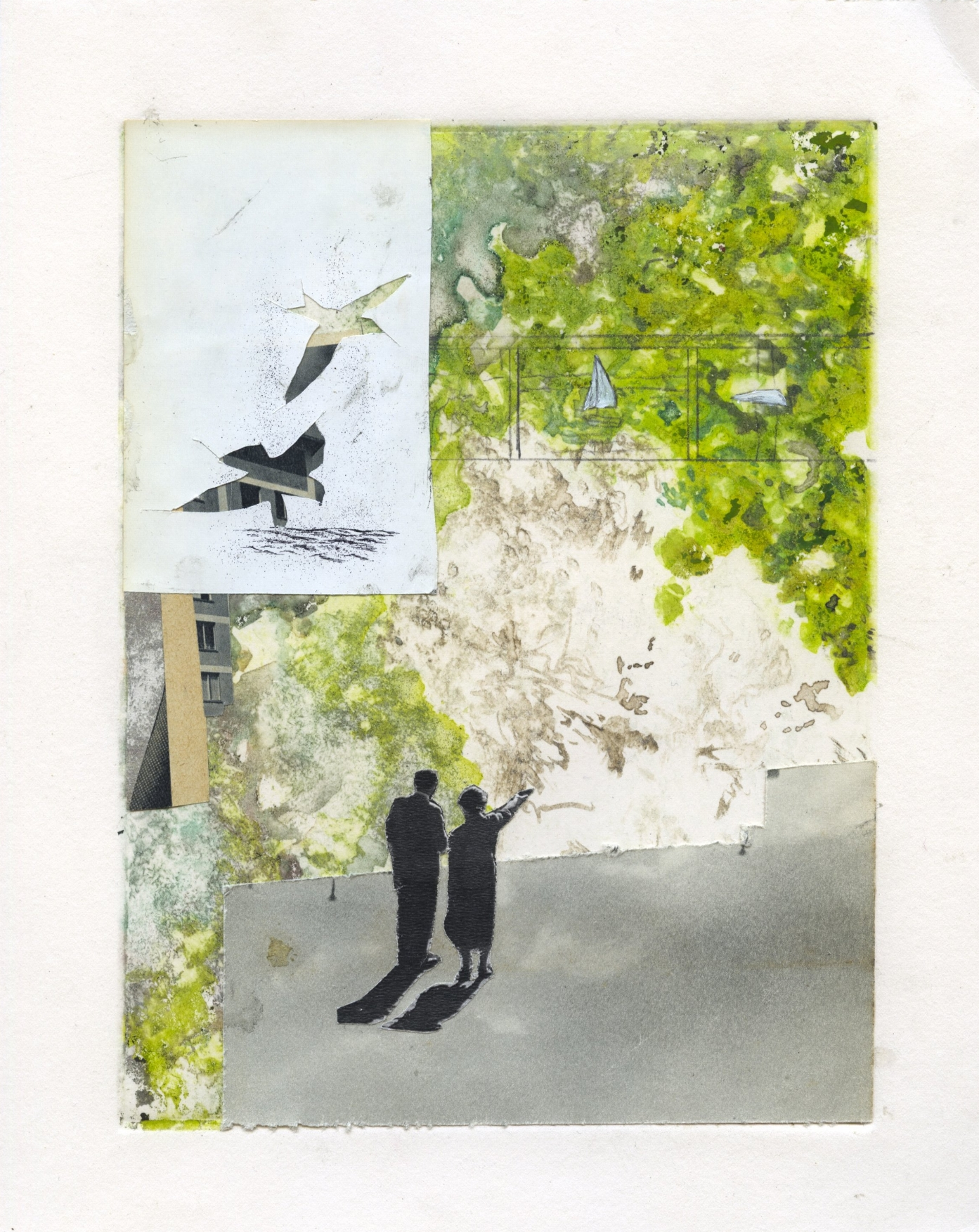 Moss , Ashley Lamb