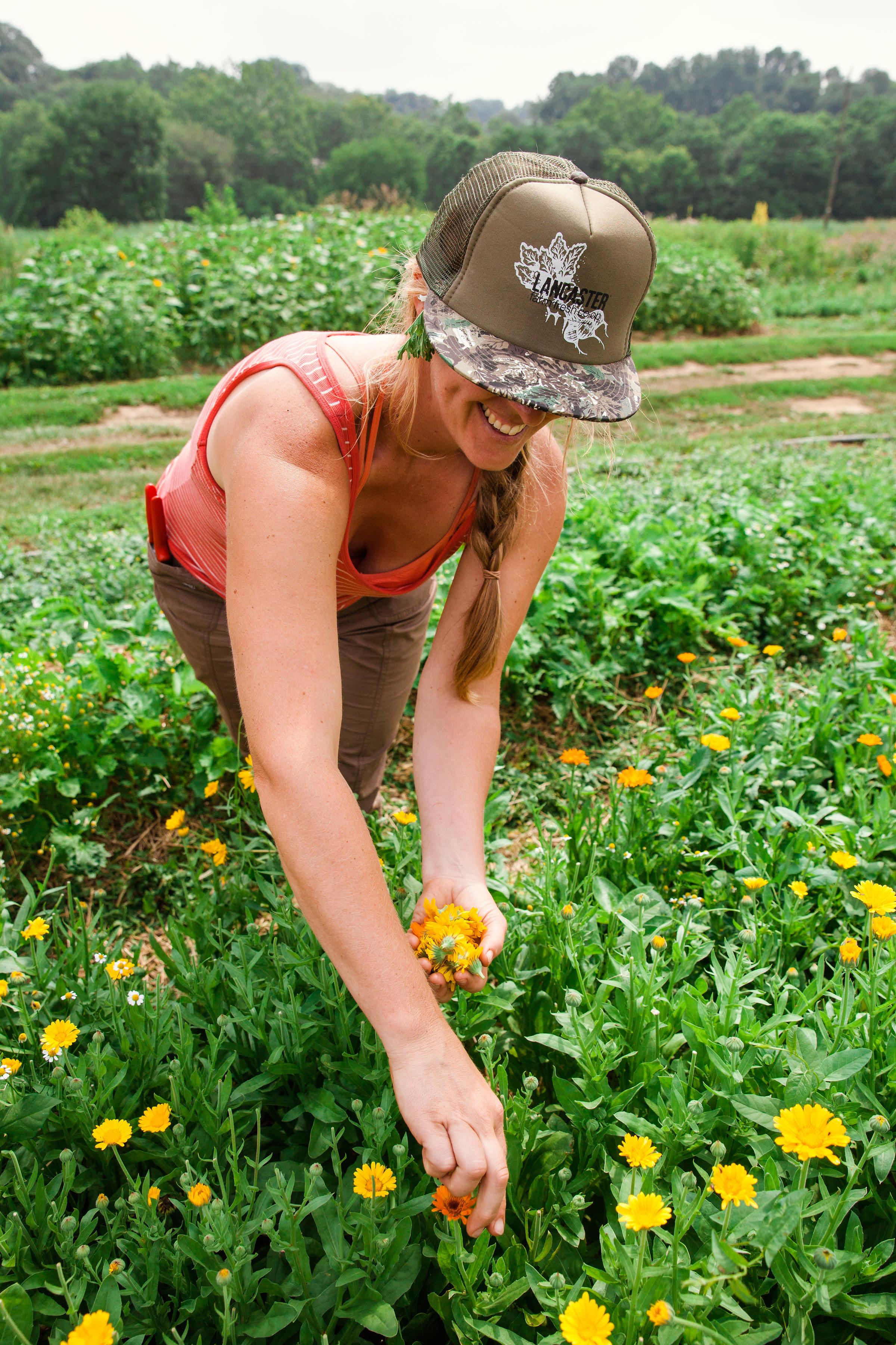 Elisabeth harvesting flowers.
