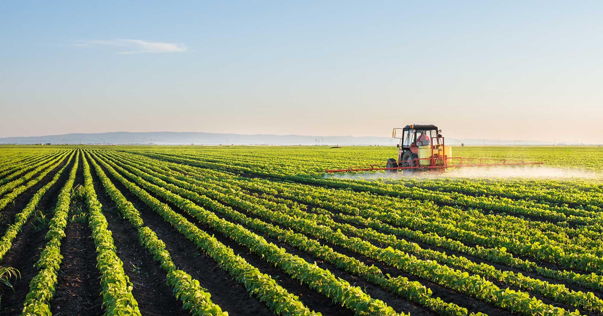 Markets_Agricultural.jpg