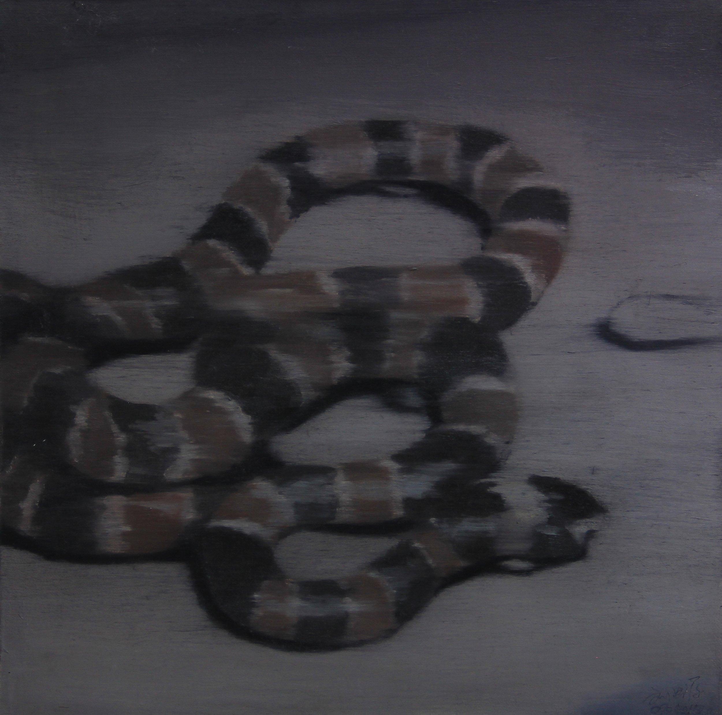 Coral snake,2010,  30cm x 30cm, Oil on canvas.jpg
