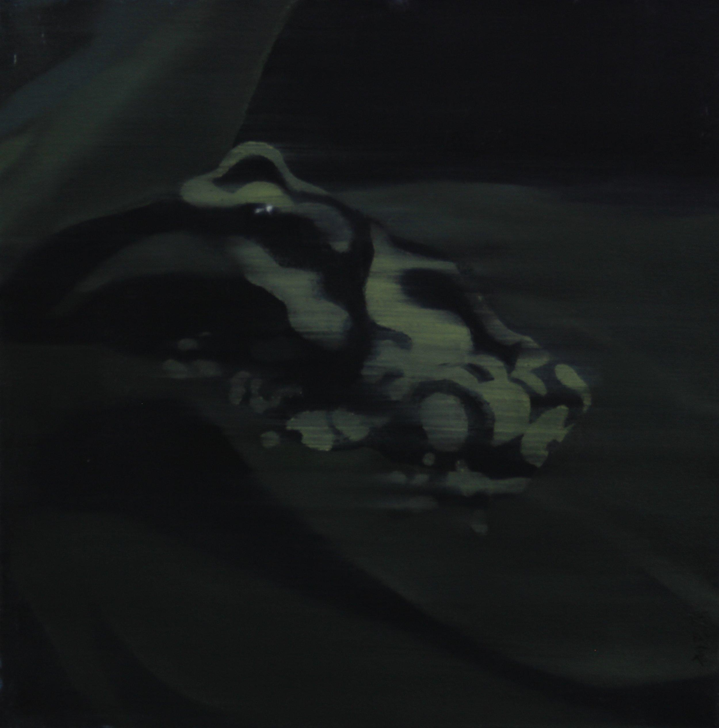 Poison,2010 , 30cm x 30cm, Oil on canvas.jpg