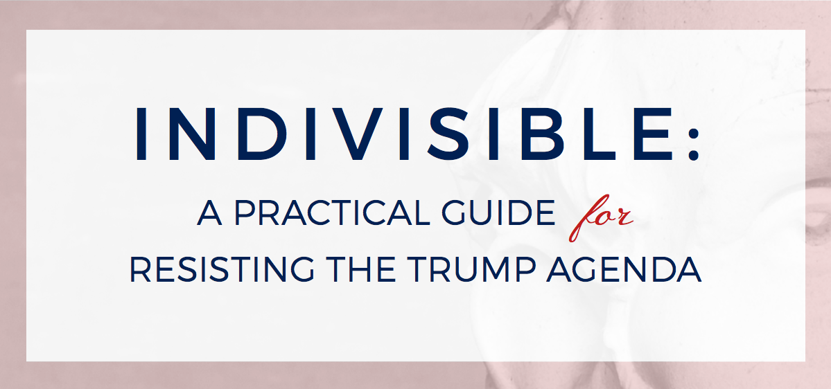 indivisiblebanner-300x150.png