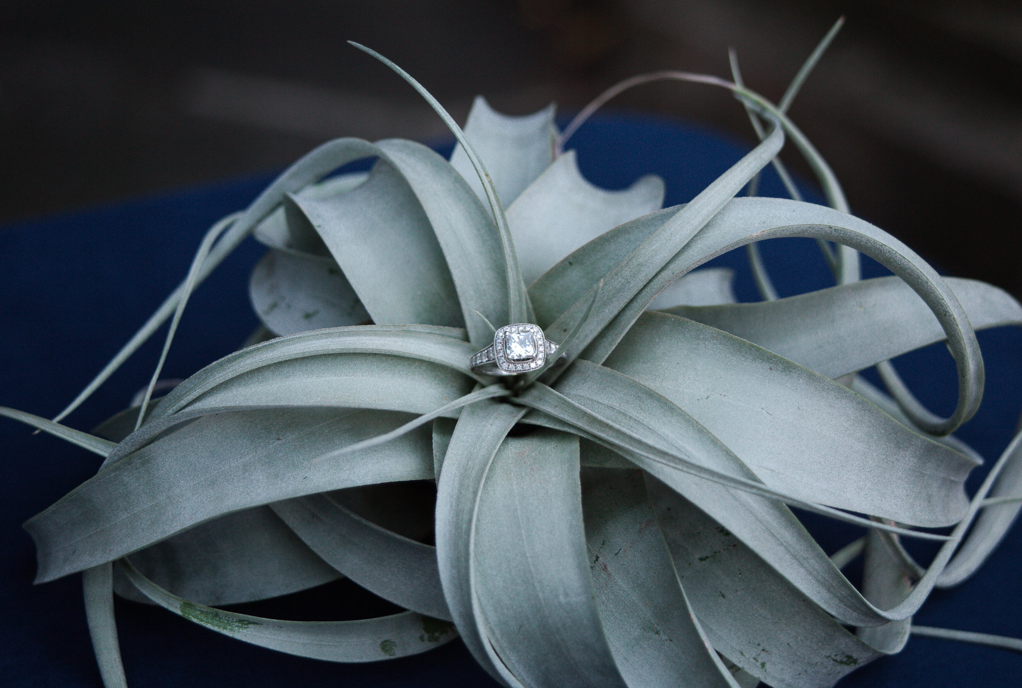 ChristineQuarte_Geodes-Gemstones_116.JPG