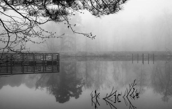 """""""Blanket of Fog"""""""