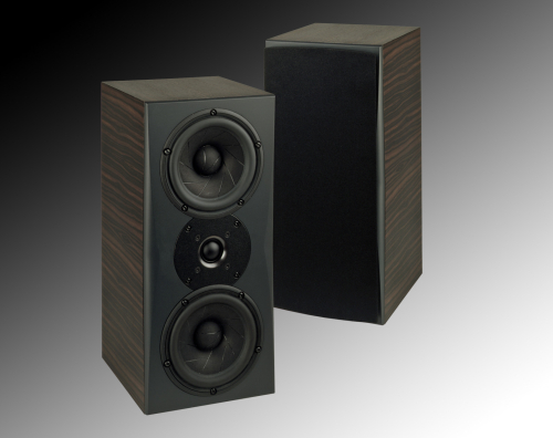 Traditional - Traditional speakers will generally give you the best sound performance. Traditional speakers come in bookshelf, surface mount and floor standing designs.