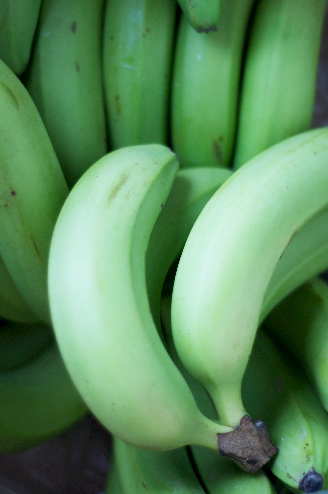 Green-bananas.jpg
