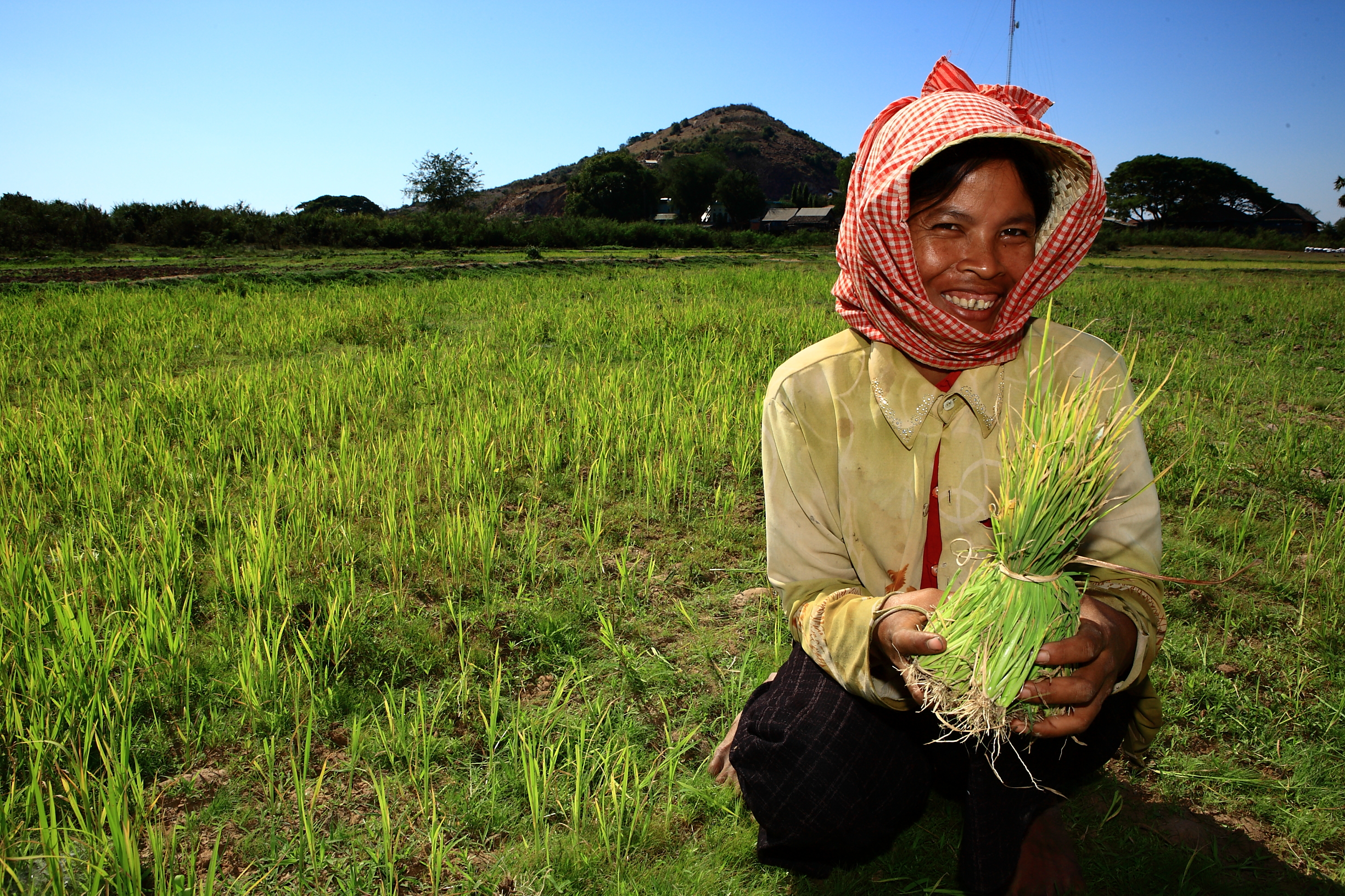 young-woman-farmer-cambodia-sei.jpg