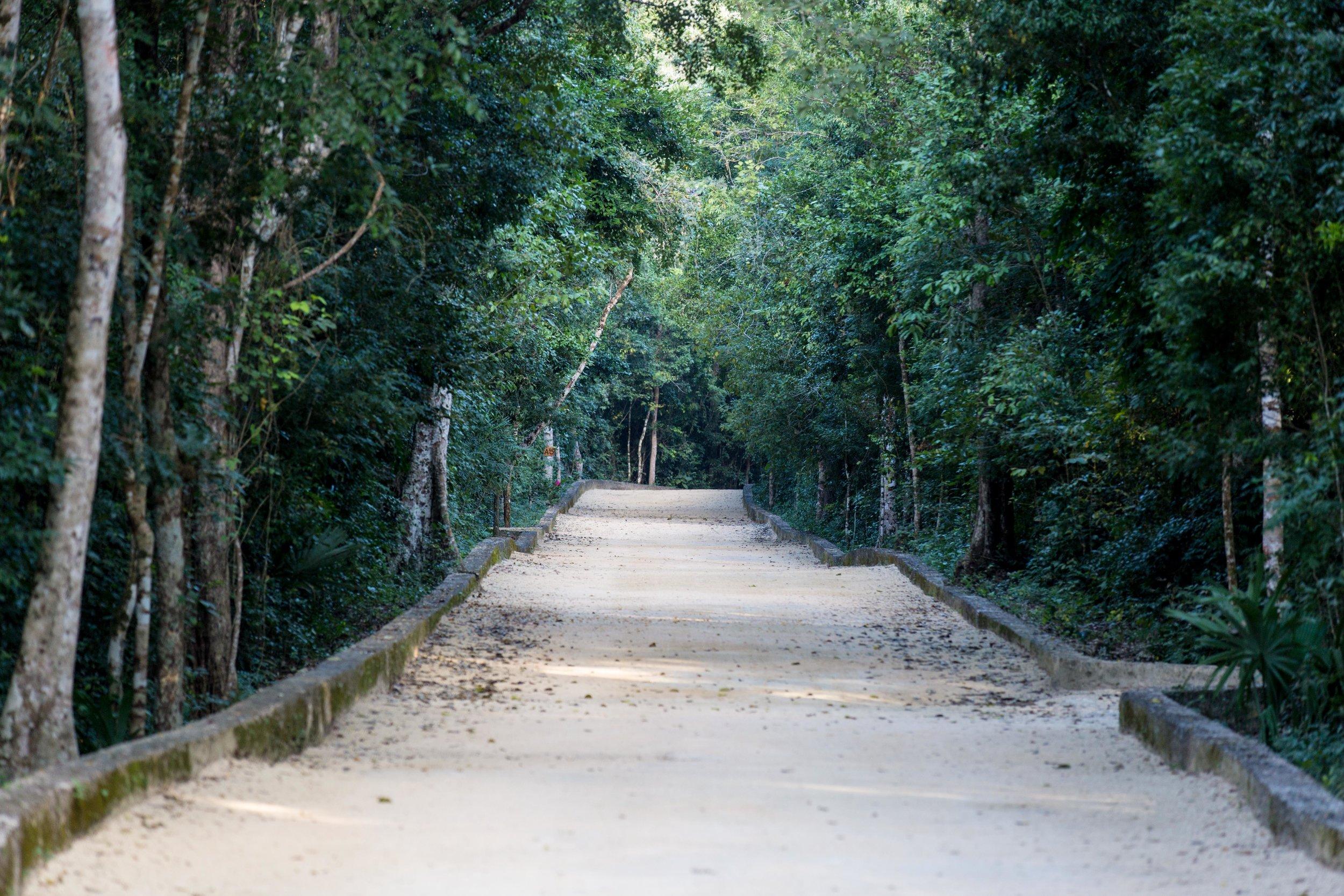 agaveweddingsgreen