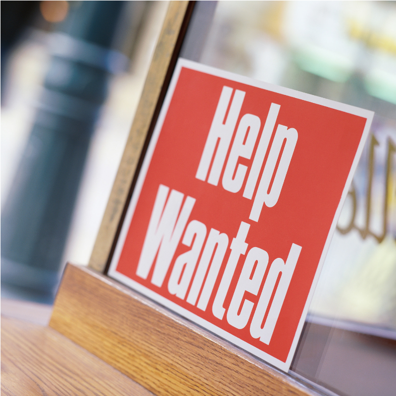 Experienced Candidates Need Not Apply