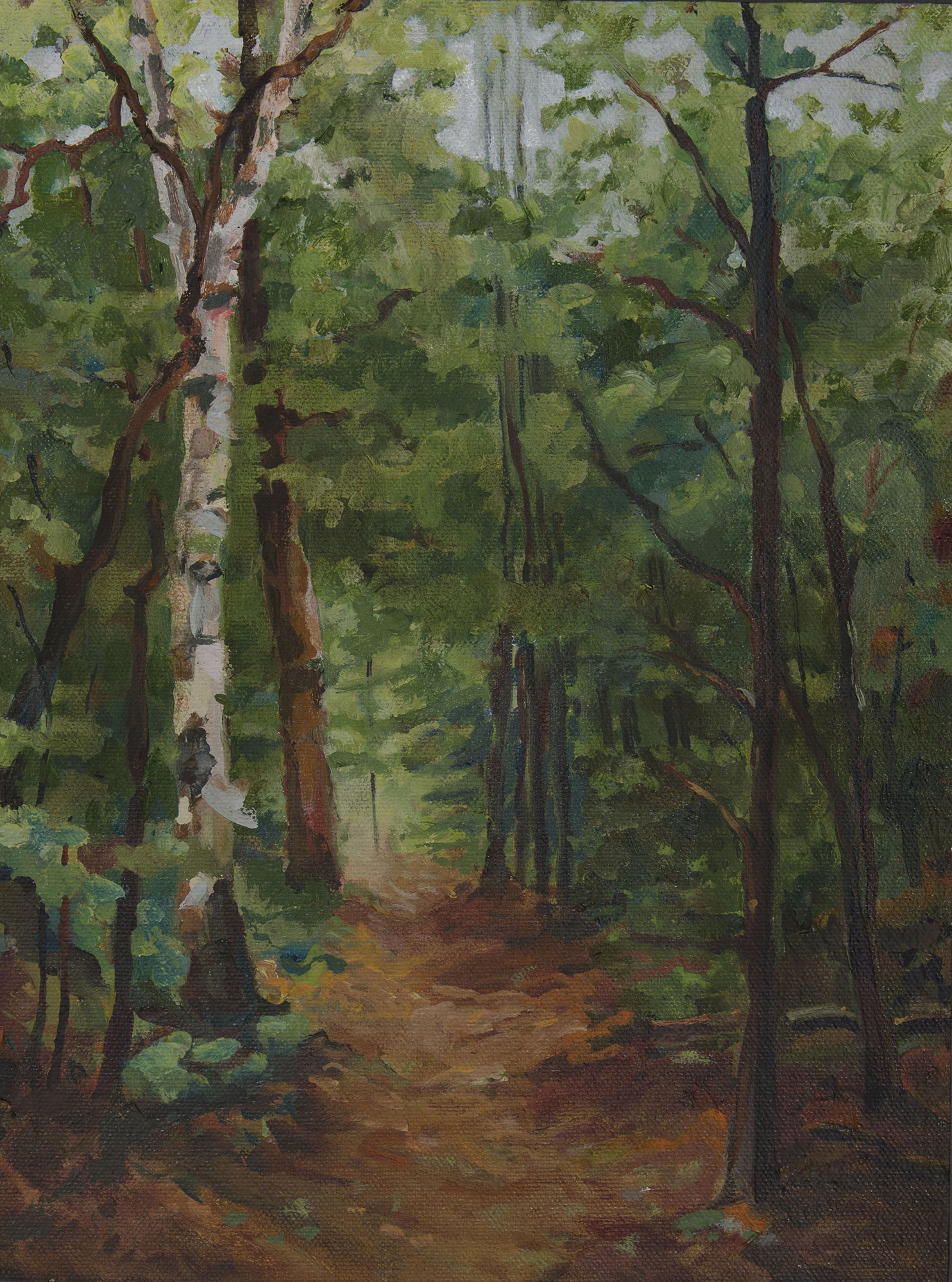 Baxter Mountain path
