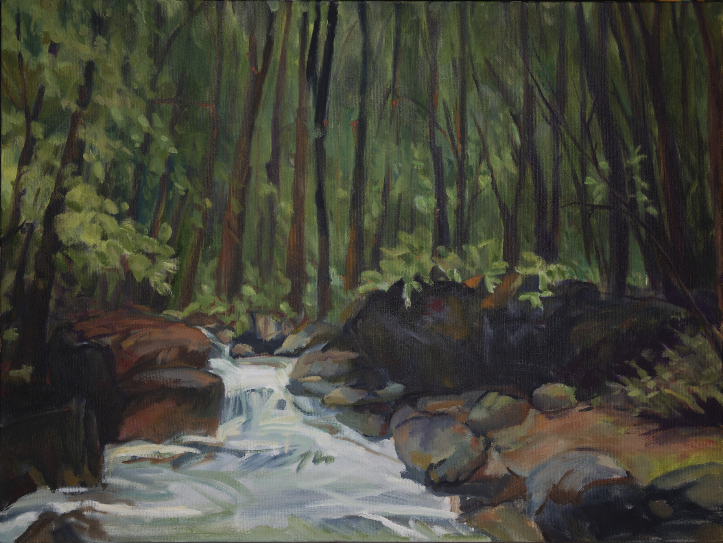 Deep Woods, Gill Brook _SM Sherman.JPG