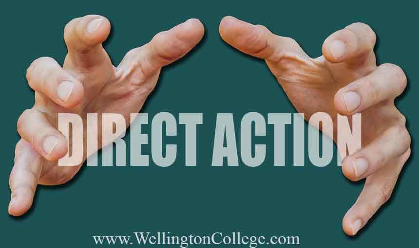 Direct_Action.jpg