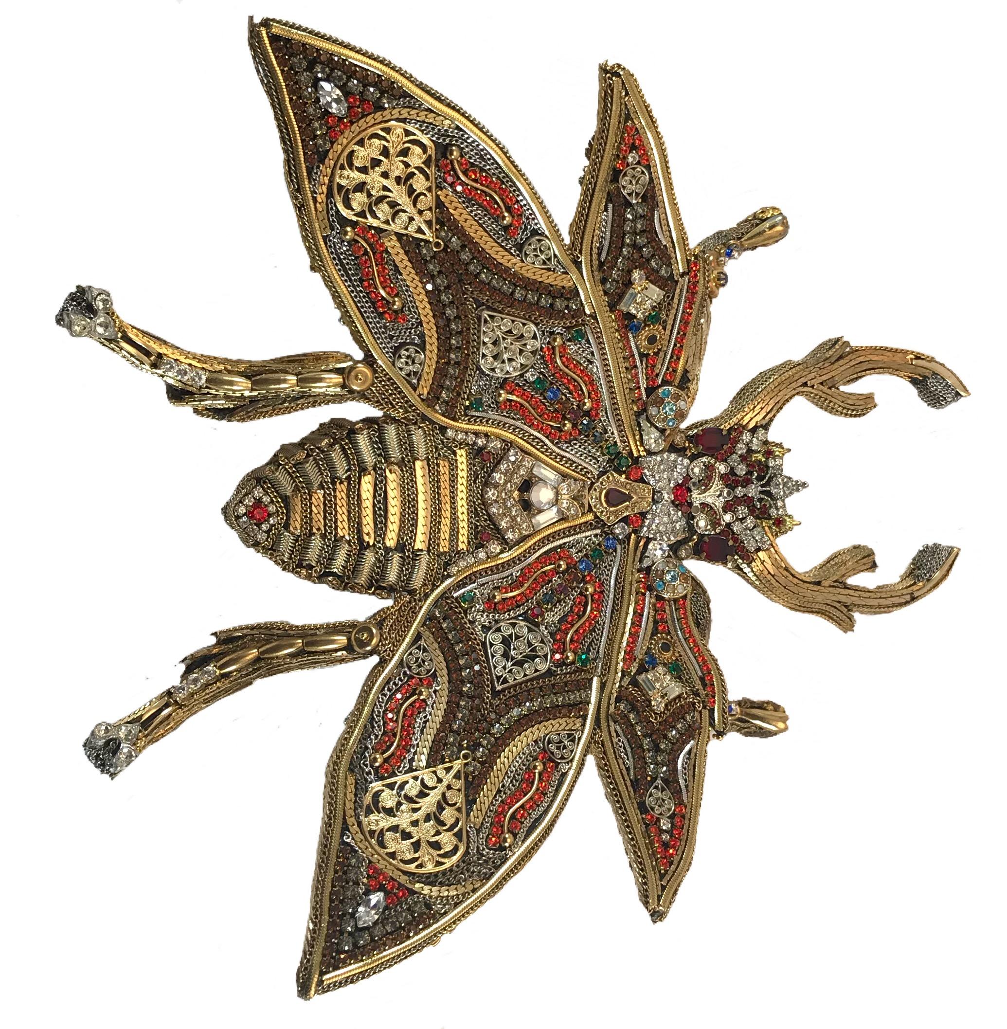 Jeweled Stag Beetle