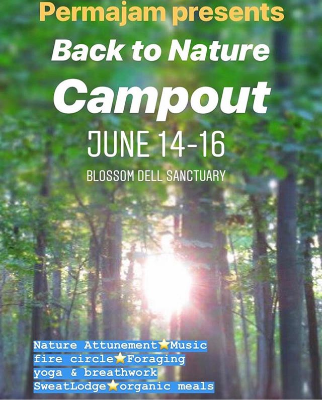 When we get back to Nature, we get back to ourselves. Many of us are so immersed in the hustle and bustle of life we have really lost touch with ourselves. If you crave connection to nature, and a deeper sense of connection with your body and soul join us at our Back To Nature Campout June 14th-June 16th. - 🌟Learn tools to let go of our everyday stress and open up to the present moment. 🌿Activate our 5 senses and experience the beauty and healing power of the Earth. 🌟Release tension and blockages in our bodies and minds through yoga, breath work, movement. 🌿Discover edible and medicinal plant species of the North East bio-region. 🌟Express your sound through song and sharing of gratitude around a sacred fire, which humans have done for centuries. ⭐️ 🌎This is a chance for a life reset, recalibration and realignment, in a circle with other people sharing this experience.🌎 On Sunday we will all participate in a powerful sweatlodge ceremony. This ritual is purification for mind, body and spirit, and a wonderful opportunity to learn from one of our elders whose traditional ways go back many generations. 🌟All meals will be provided🌟 Things to bring: Camping gear (tent, flashlight, natural soaps, toothbrush and toothpaste, pillows, sleeping bag, blankets, 2 towels, rain gear, boots, sneakers, hat, bug spray, sun screen, water bottle) swimsuit, sweat clothes (long skirt or sarong for women, shorts for men), musical instruments, yoga mat, camping chair journal.  Things not to bring: Drugs or Alcohol  Cost: $175, $135 for Blossom Dell Members  If you are interested in getting back to Nature, reach out to me via DM. We would love to have you!!!! Yours Truly will be teaching yoga  at this @permajam produced event.  Let's get back to our wild Nature💚🌿🌎🔥💧✌🏽 #Permajam #naturecampout #upstateny #nature #yoga #nycyogi #backtonature #soulbody