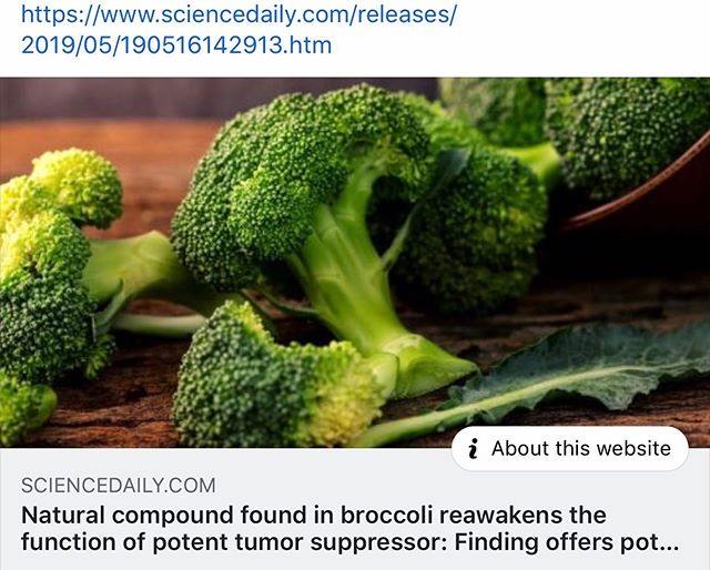 Long associated with decreased risk of cancer, broccoli and other cruciferous vegetables -- the family of plants that also includes cauliflower, cabbage, collard greens, Brussels sprouts and kale -- contain a molecule that inactivates a gene known to play a role in a variety of common human cancers. A new study demonstrates that targeting the gene, known as WWP1, with the ingredient found in broccoli suppressed tumor growth in cancer-prone lab animals.