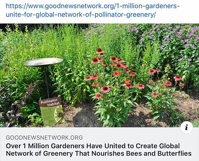 The National Pollinator Garden Network has surpassed their goal of registered pollinator gardens with just over 1,040,000 gardens now registered with their Million Pollinator Garden Challenge.  Join the challenge!