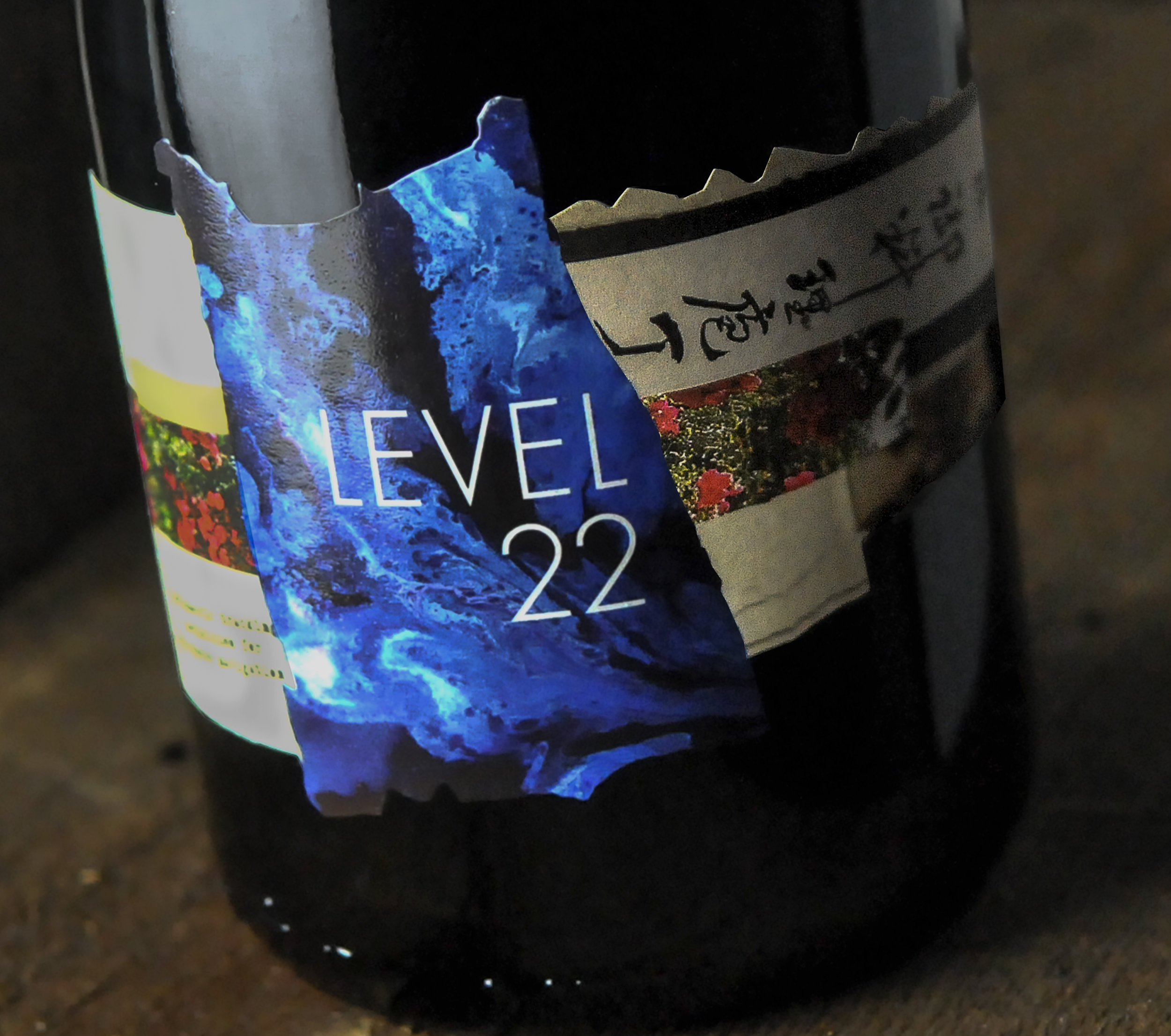 Level 22 Close Up New.jpg