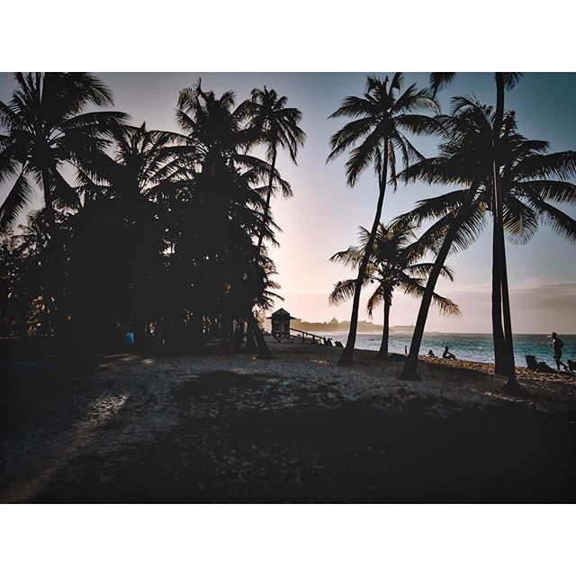 Craving #puertorico #beach #vibes 😌🌴