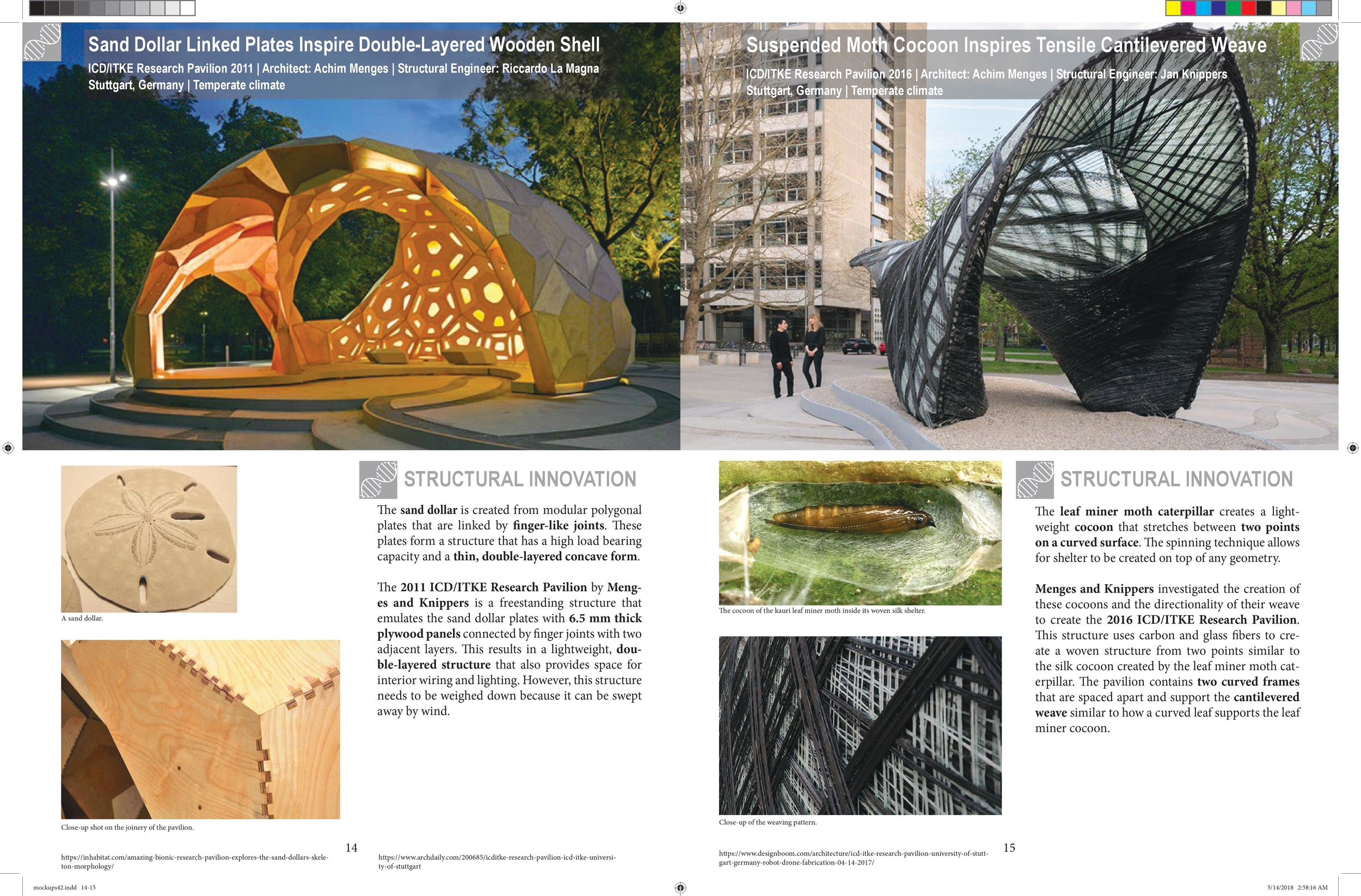 Biomimicry in Architecture (Jan-May 2018) — Victoria Yong