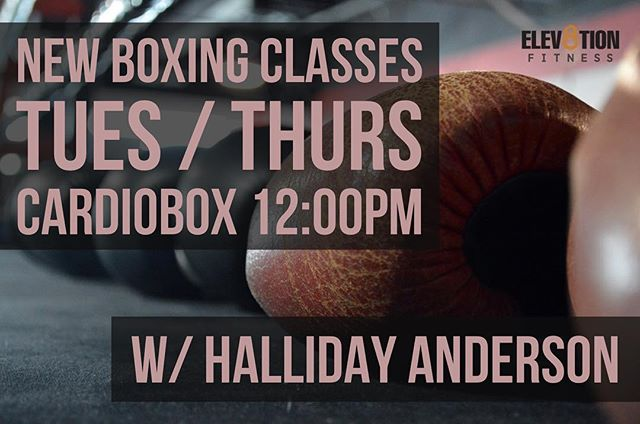 HIIT MEMBER NEWS!💥 We answered your call! A new lunch time boxing/cardio class is in session! Join us every Tuesday and Thursday at 12PM for an intense workout 🔥 . Additional boxing classes: BootyBox Tues 7:30PM CardioBox Thurs 6:30PM/Sun 11AM . Take you first class for free... DM us for more info 👊🏼 . #aedistrictmiami #wynwood #brickell #southbeach #miamibeach #downtownmiami #fitnessandhealth #fitness #muscleandfitness #motivation #inspiration #goals #success #miami #nike #adidas #bodybuilding #classicphysique #getshitdone #powerlifting #boxing #classicphysique #life #quotes #elev8tionfitness #HIIT