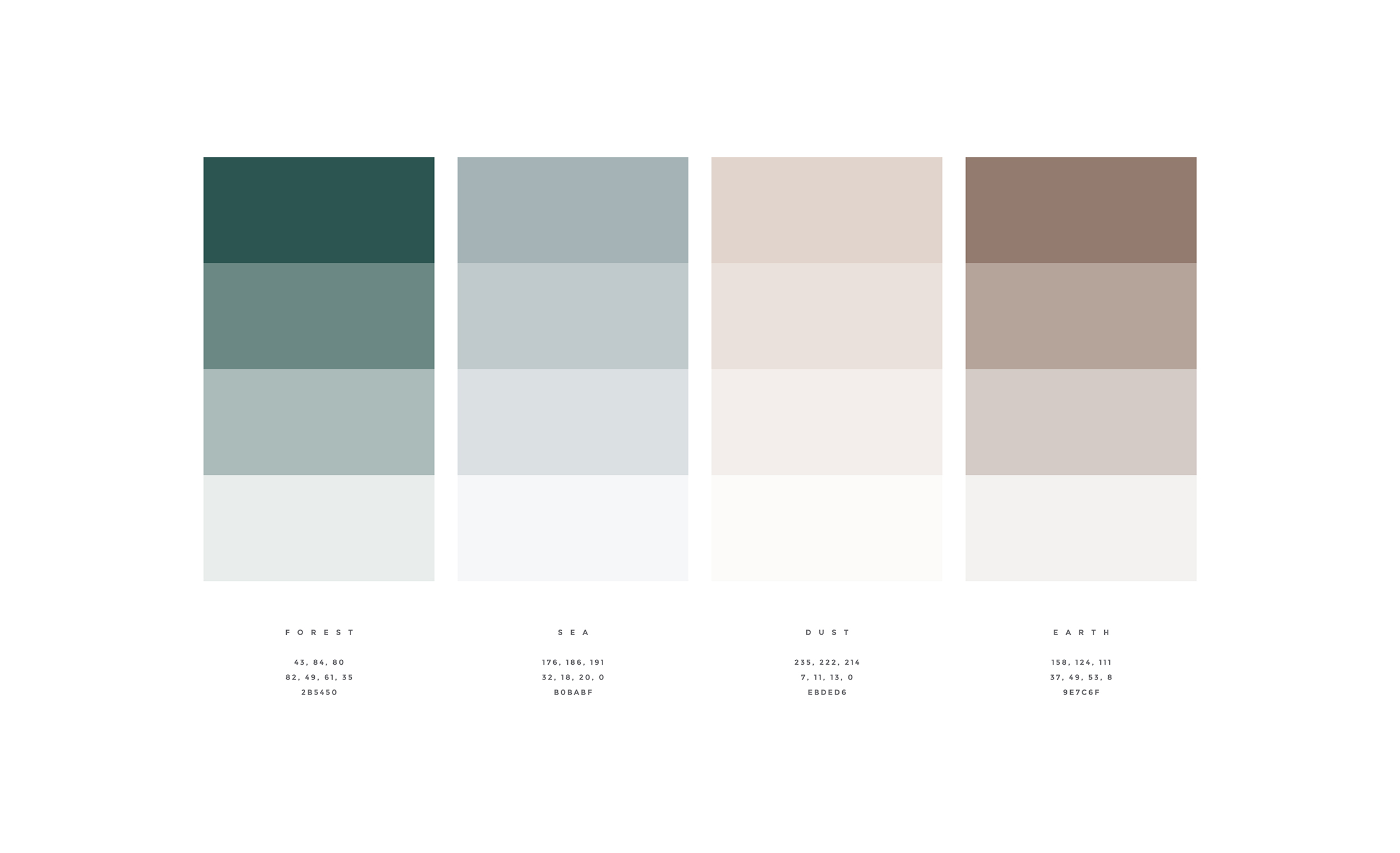 CANOPY_Land + Sea_Color Palette