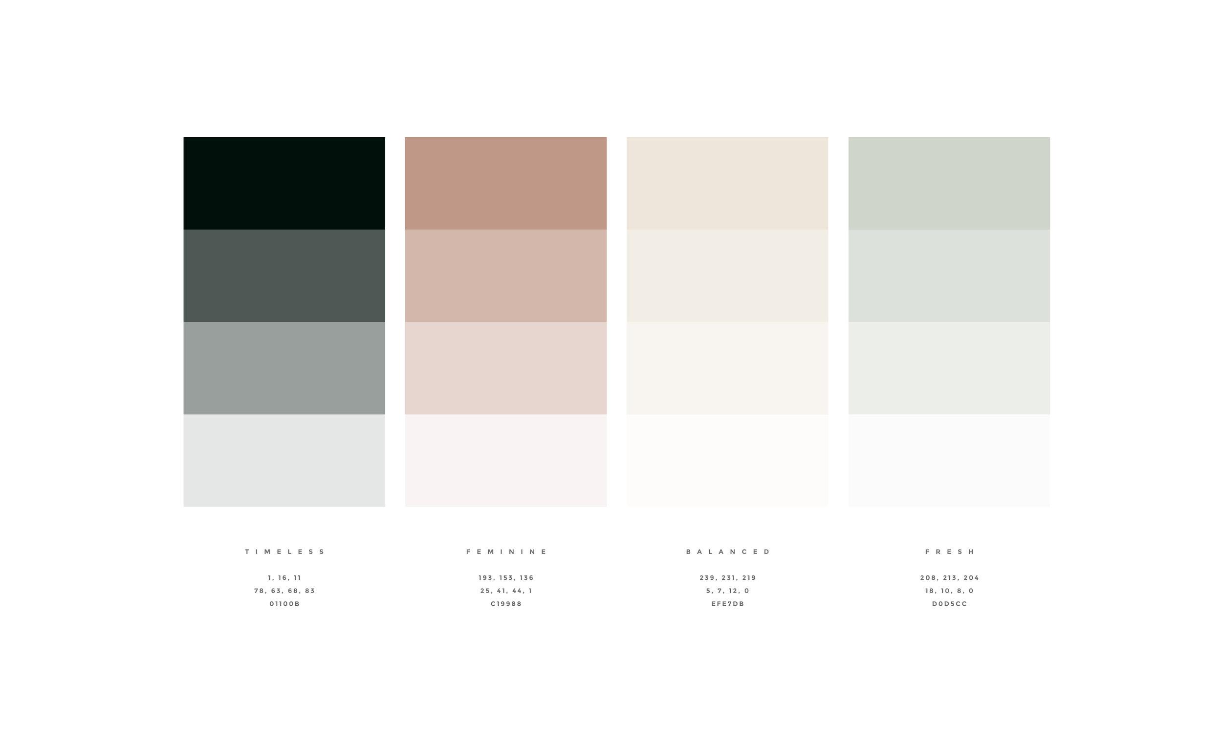 CANOPY_Katelyn Ortego_Color Palette.jpg
