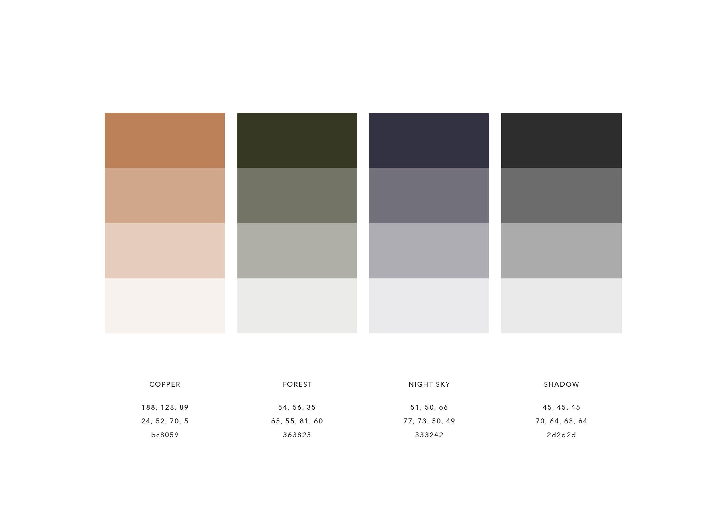CANOPY_Black Tree Resort_Branding_Color Palette Design.jpg