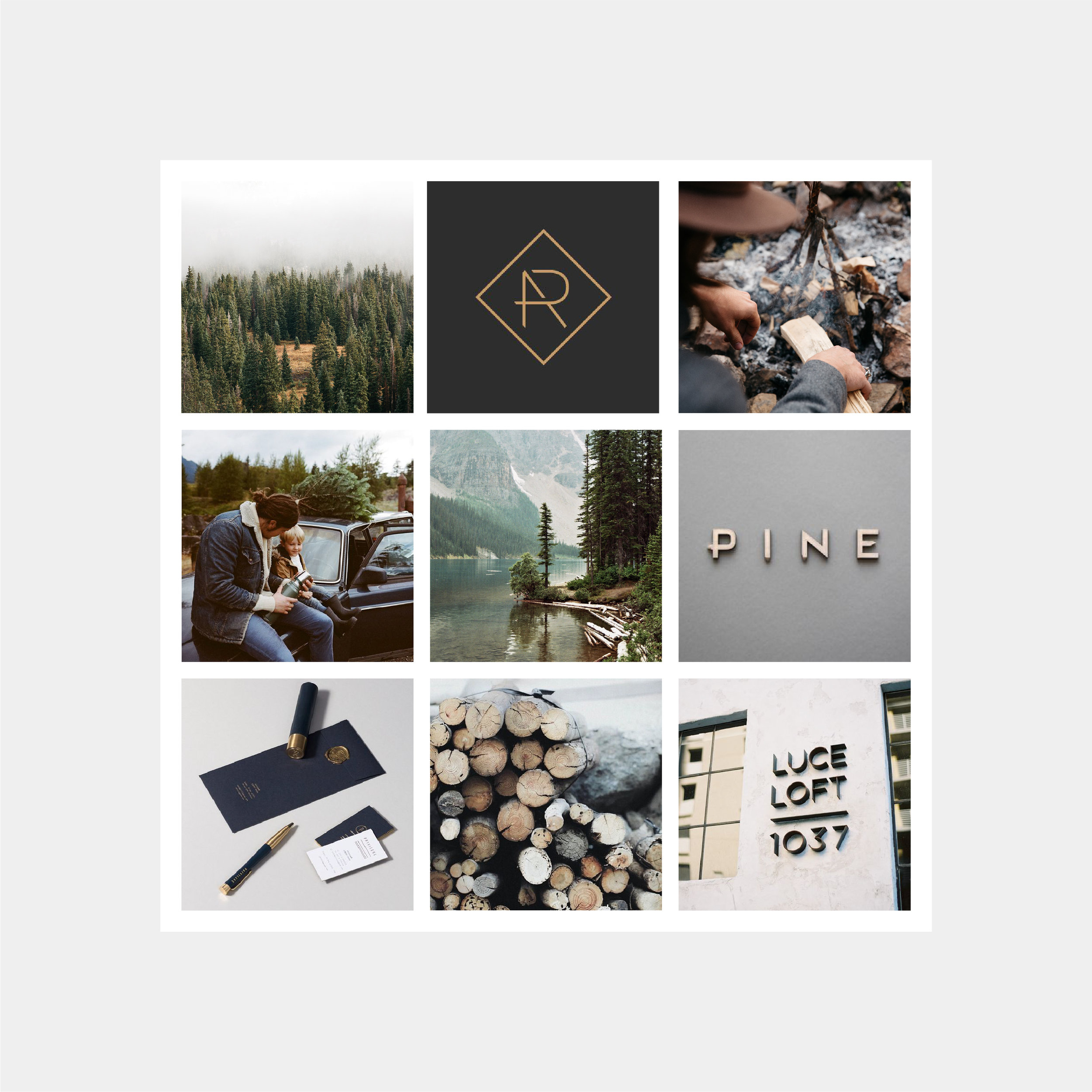 CANOPY_Black Tree Resort_Branding_Mood Board Design.jpg