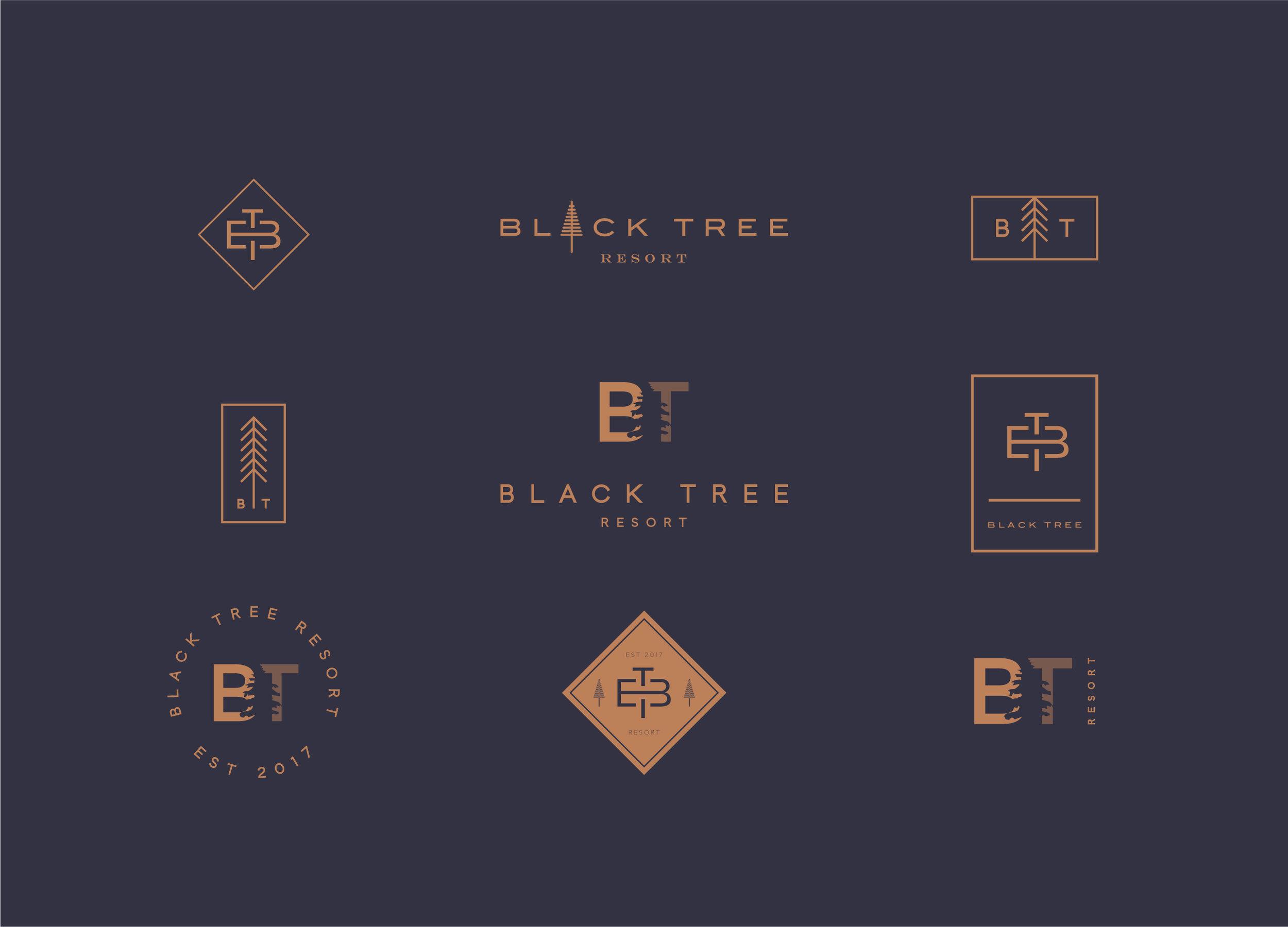 CANOPY_Black Tree Resort_Branding_Logo Design 02.jpg