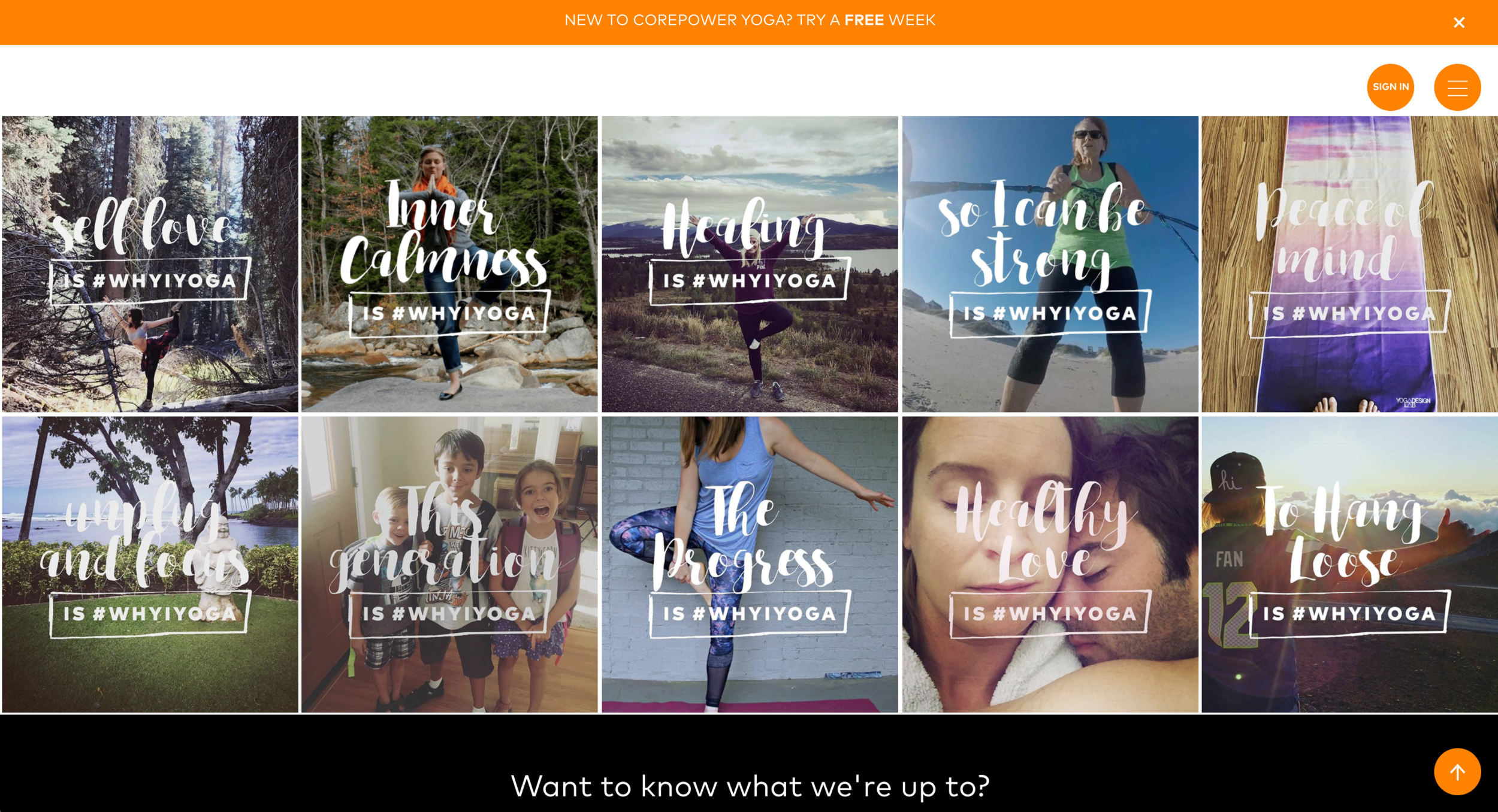 StoryBox is simple to manage and integrate no matter your level of expertise