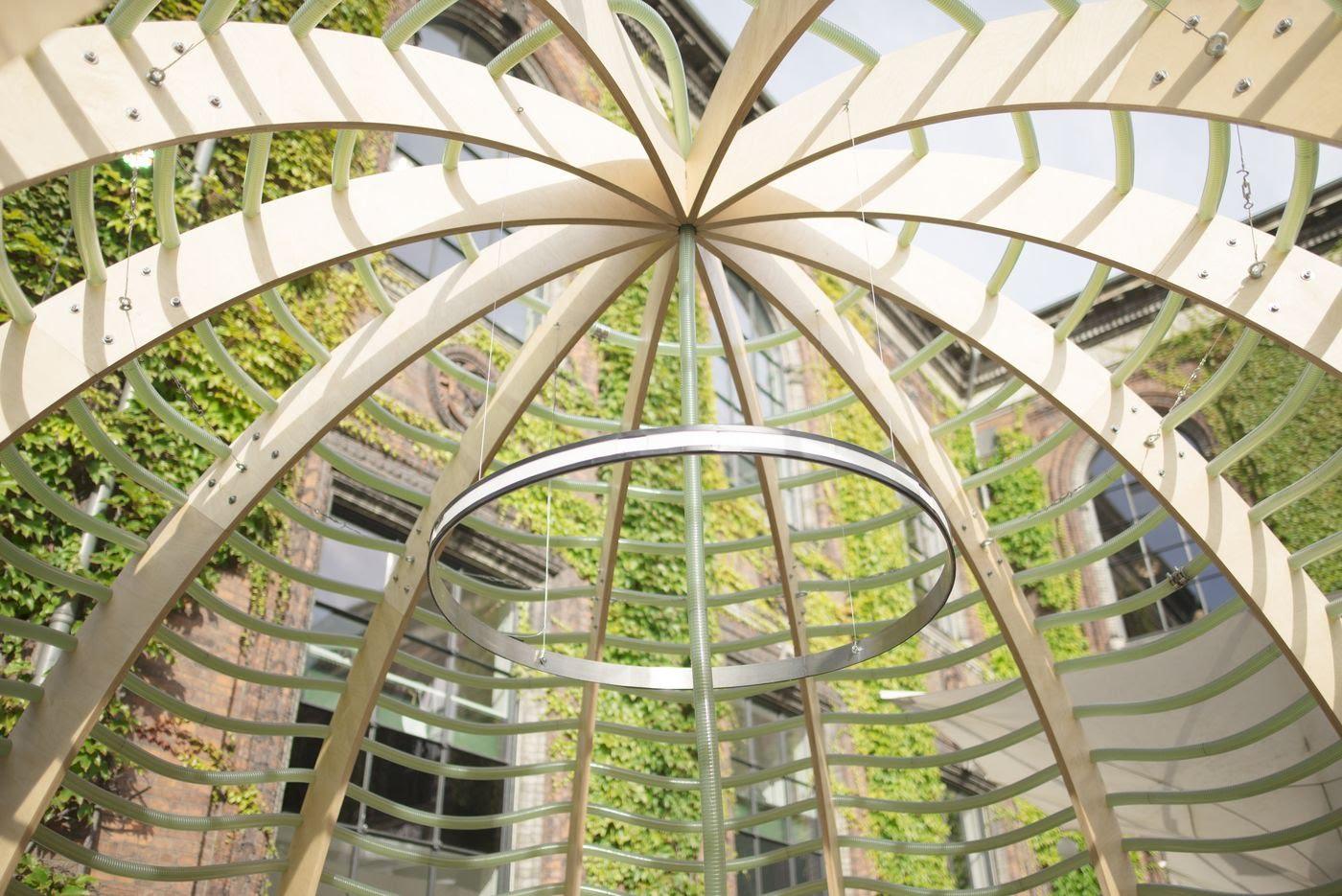 Algae Dome3.jpg