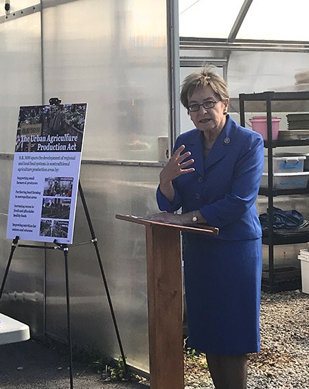 Ohio Congresswoman Marcy Kaptur introduced the Urban Agriculture Production Act in September with the goal of supporting small farmers, helping to eliminate food deserts and promoting local agriculture.