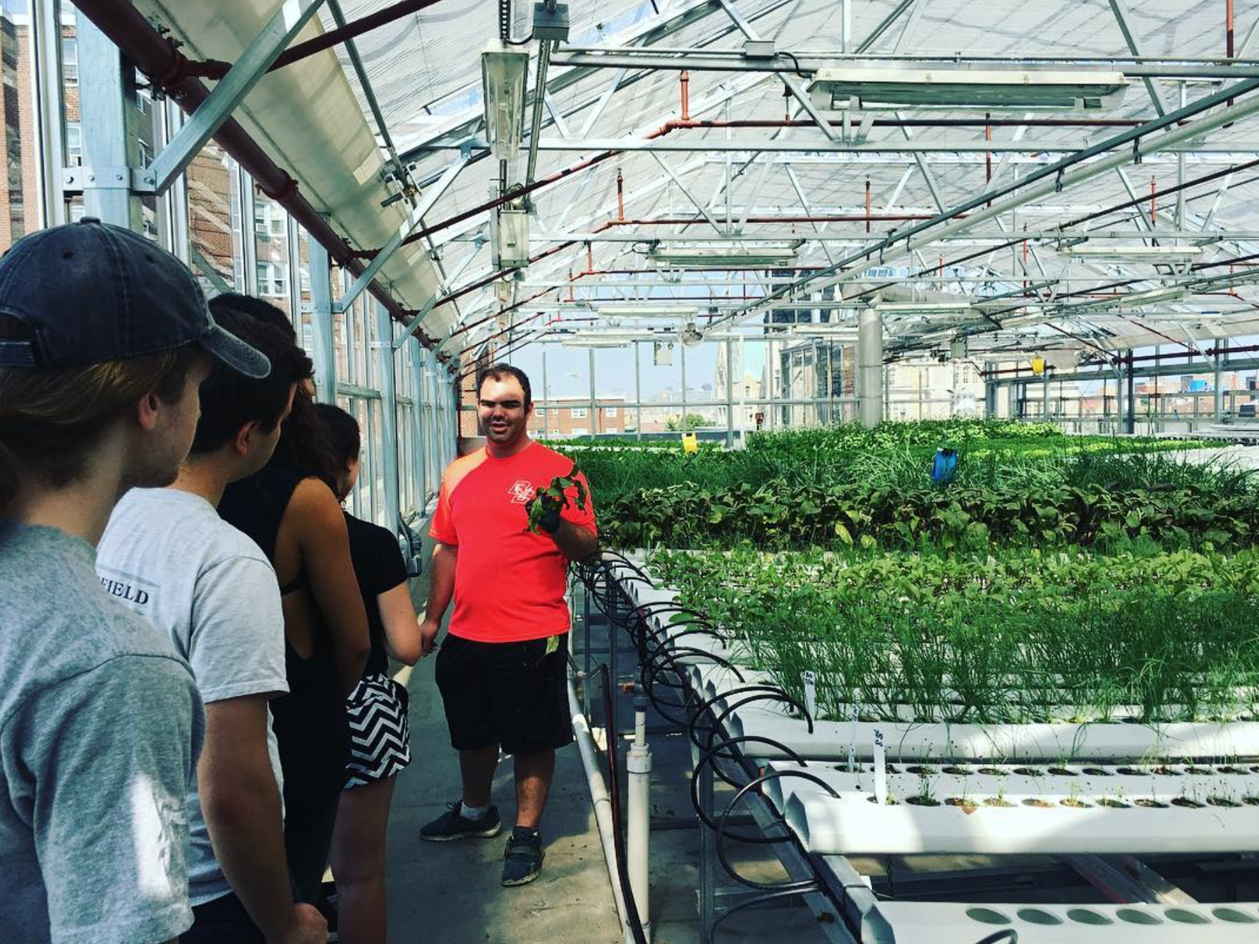 Commercial Urban Agriculture and Hydroponics Classes