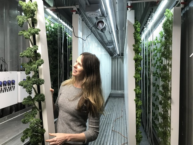 Ana Buckman, Acre in a Box's CFO, shows off kale that was later sent off to local businesses in Houston. (Meagan Flynn / The Atlantic)