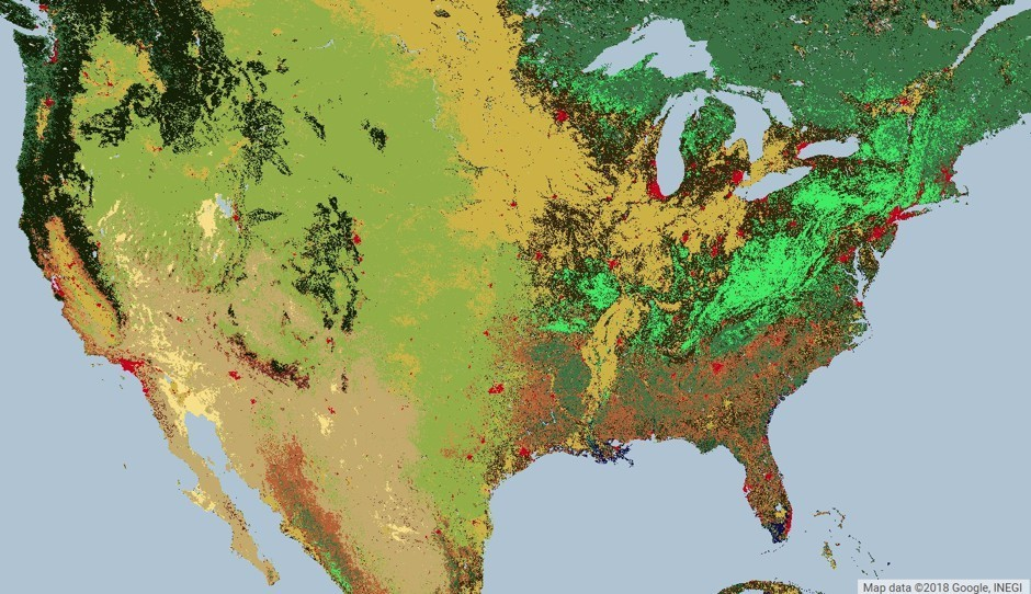 A MODIS Land Cover Type satellite image of the United States, similar to imagery analyzed by the researchers. Different colors indicate different land uses: red is urban; bright green is deciduous broadleaf forest. (Obtained from  https://lpdaac.usgs.gov/ maintained by the NASA EOSDIS Land Processes Distributed Active Archive Center, USGS/Earth Resources Observation and Science Center)