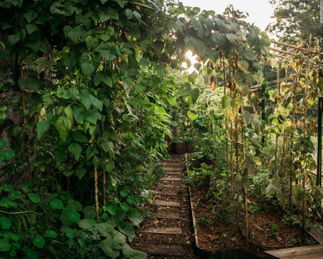 La REcyclerie, Paris - Located next to the café, the  urban farm covers 1,000 square meters (about 10,760 square feet), and features more than 150 herbs and crops, as well as beehives and animals.Credit:Simon Lemarchand