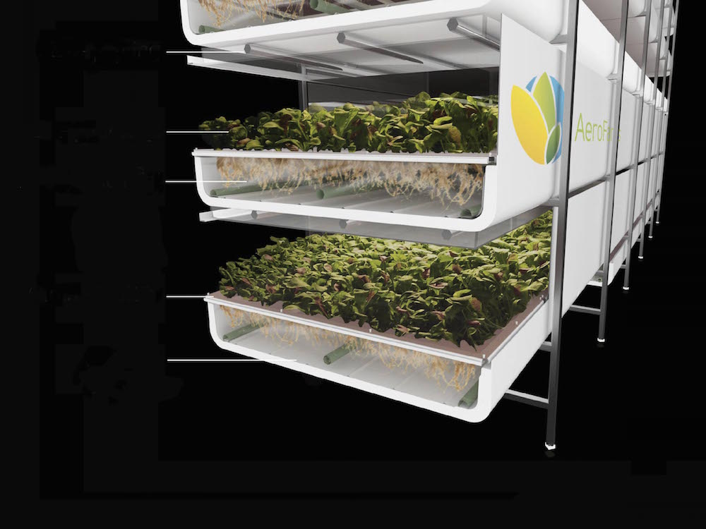 AeroFarms' vertical gardens grow under energy-efficient LED lights and use up to 70 percent less water, compared with more traditional soil-based or horizontal farming. Its largest facility, in Newark, New Jersey, produces 2 million pounds of leafy greens each year, which don't have to travel far to reach urban markets. Despite these efficiencies, critics of vertical farming say using electricity rather than renewable sunlight doesn't add up for high-volume production. Photo courtesy Aerofarms.