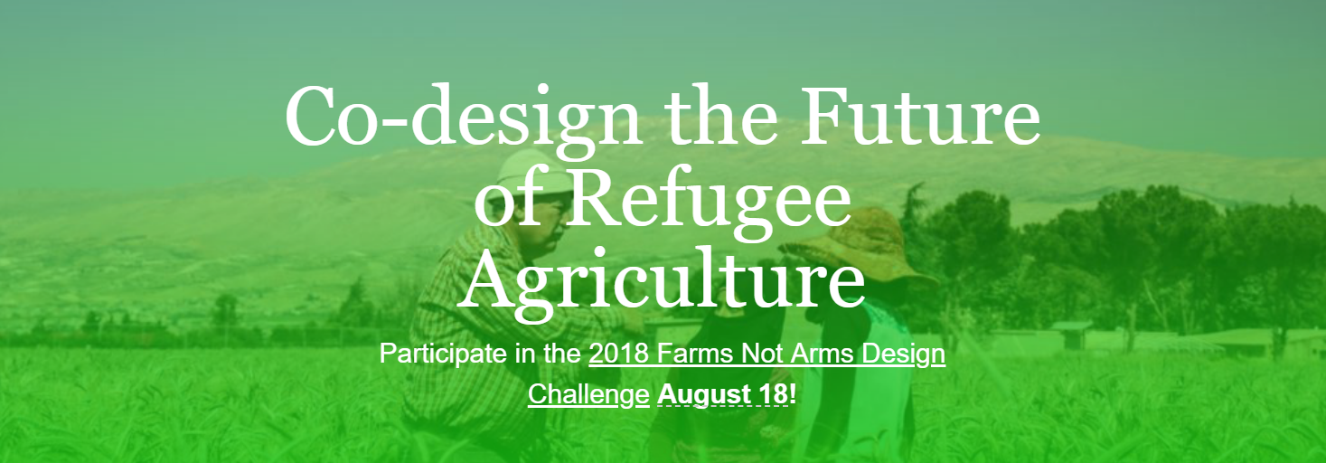 Farms Not Arms Design Sprint.png