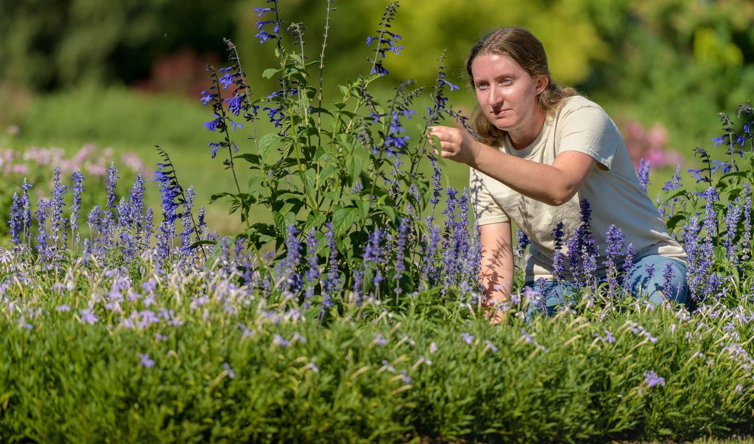 "Nora Palmer, 21, works at Hershey Gardens in Hershey, Pa., on July 19. ""Everything you do in horticulture is wonderful,"" Palmer said. ""Almost magical."" (Jim Graham/For The Washington Post)"