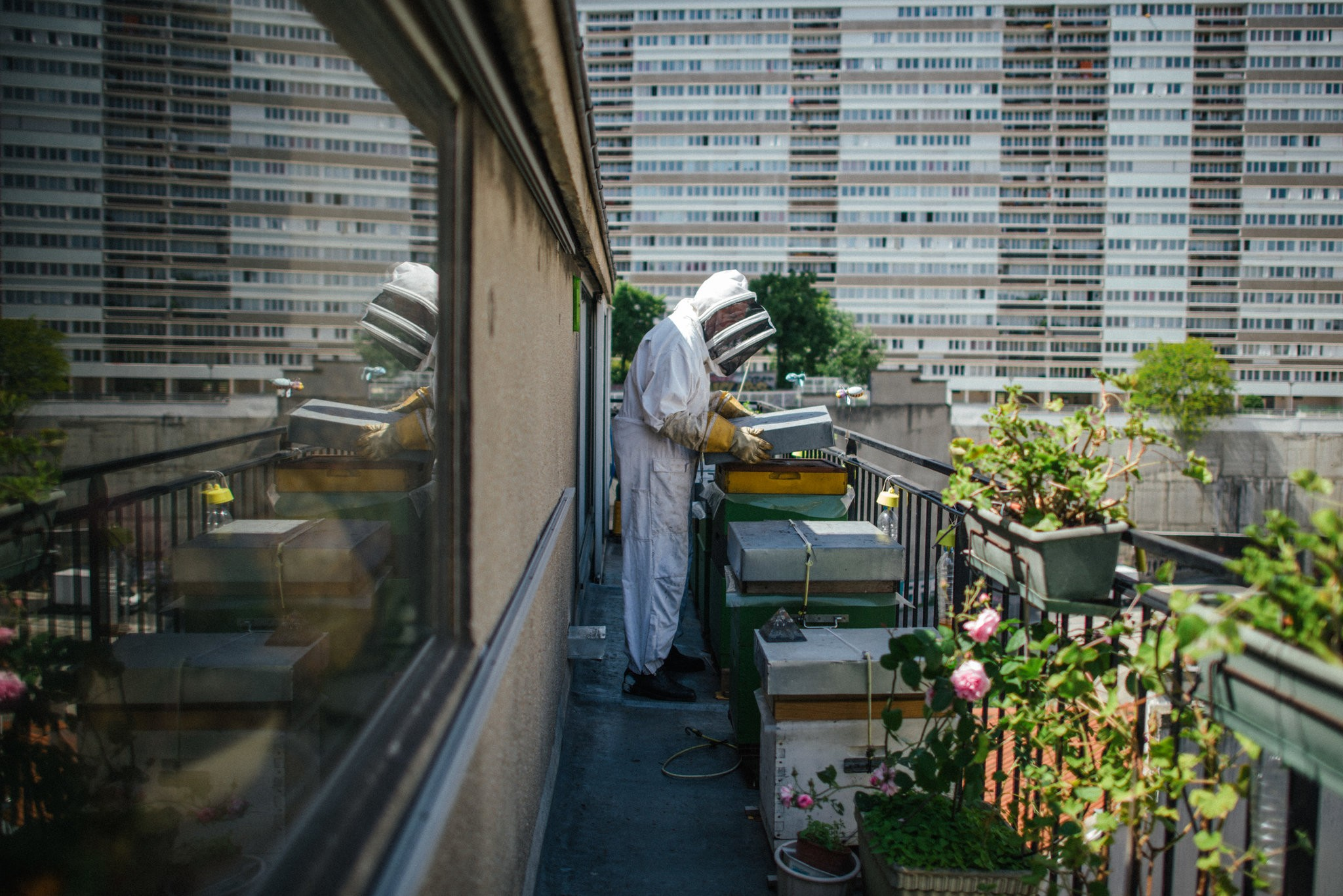 Armand Malvezin with the hives he tends on the balcony of his apartment in the 13th Arrondissement.