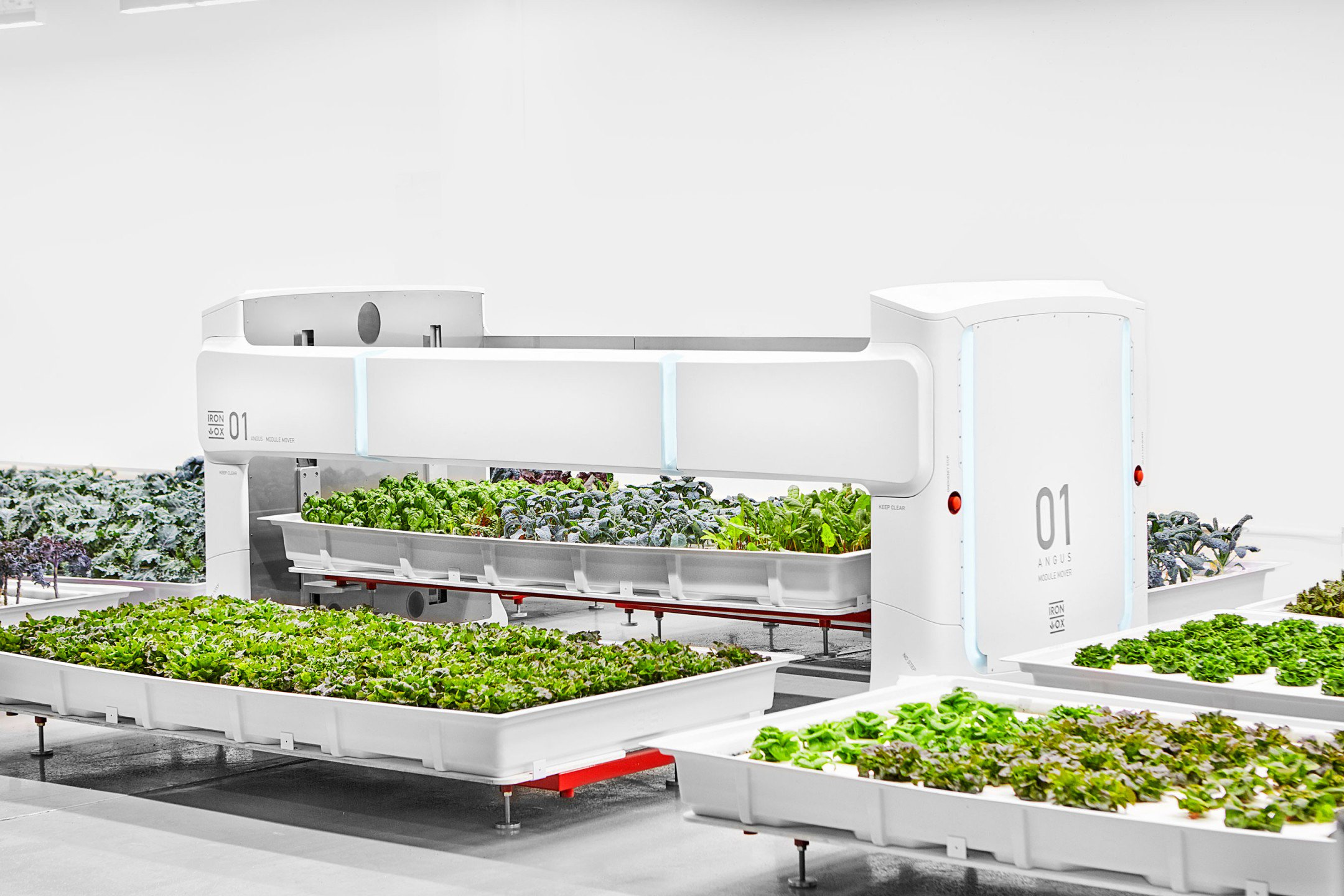 A robotic mover transfers a hydroponic container of leafy greens at Iron Ox's growing facility. (Courtesy: Iron Ox)
