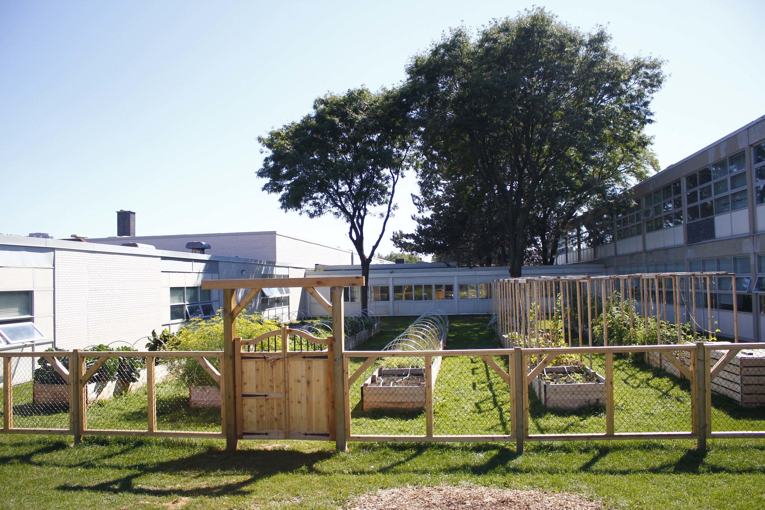 dan kunanec toronto urban farm school.JPG