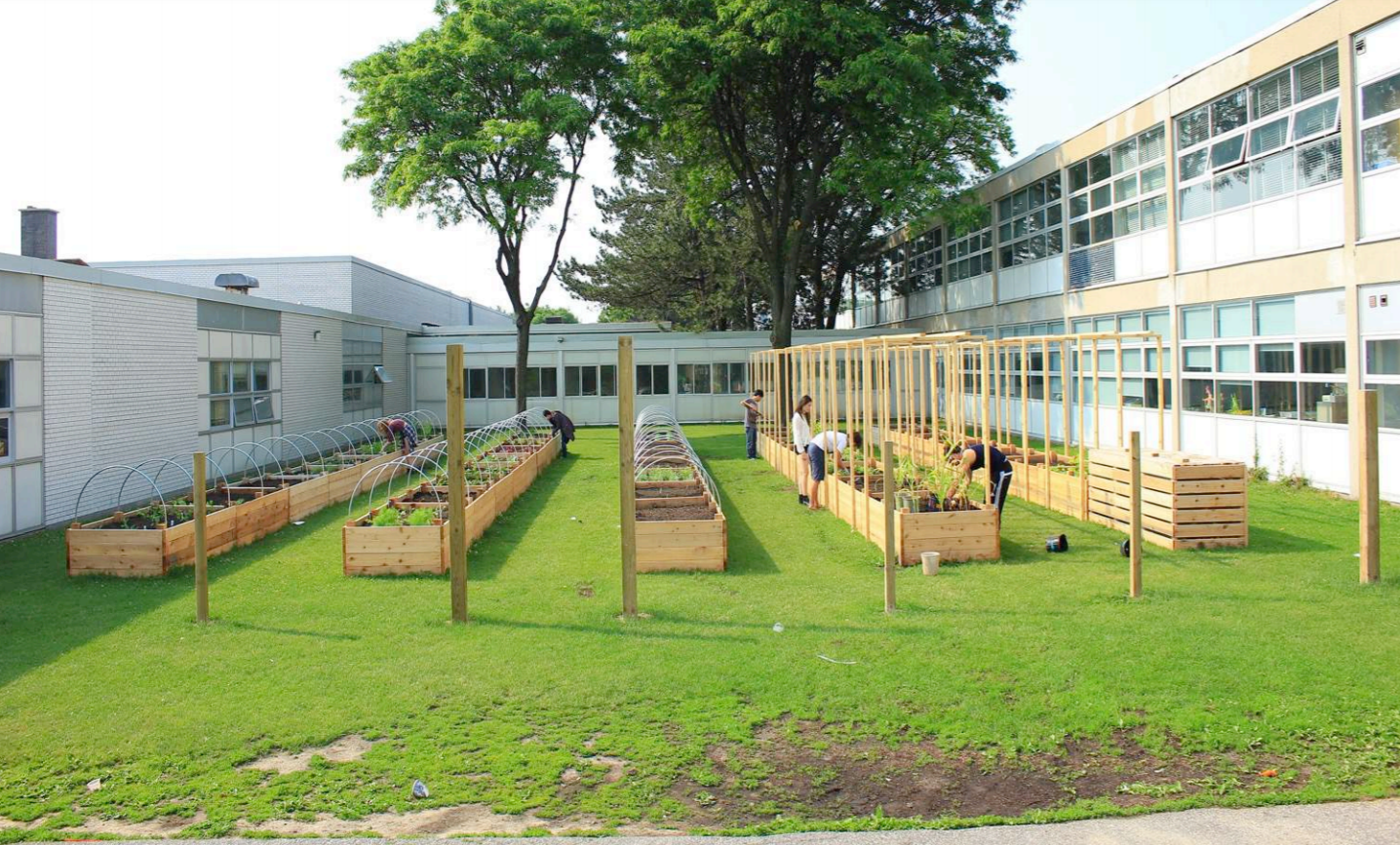 students working on raised beds.png