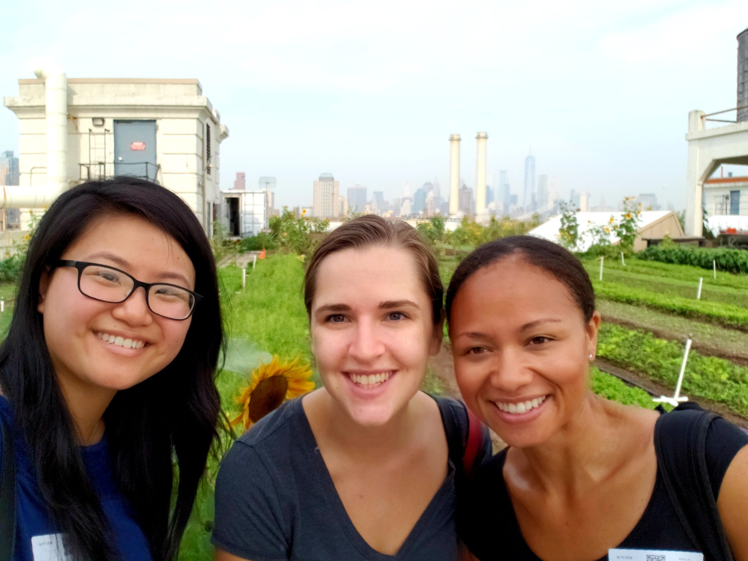 Tinia Pina of Re-Nuble (right), on a tour of Brooklyn Grange Farm with interns Shirley (left) and Lena (center).