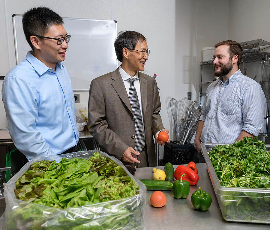 Postdoctoral fellow Bopeng Zhang, left, Professor Yongshen Chen and graduate research assistant Thomas Igou will pilot a project to use wastewater nutrients to grow lettuce, tomatoes and other fruits and vegetables. Their pilot system will use Georgia Tech's wastewater.