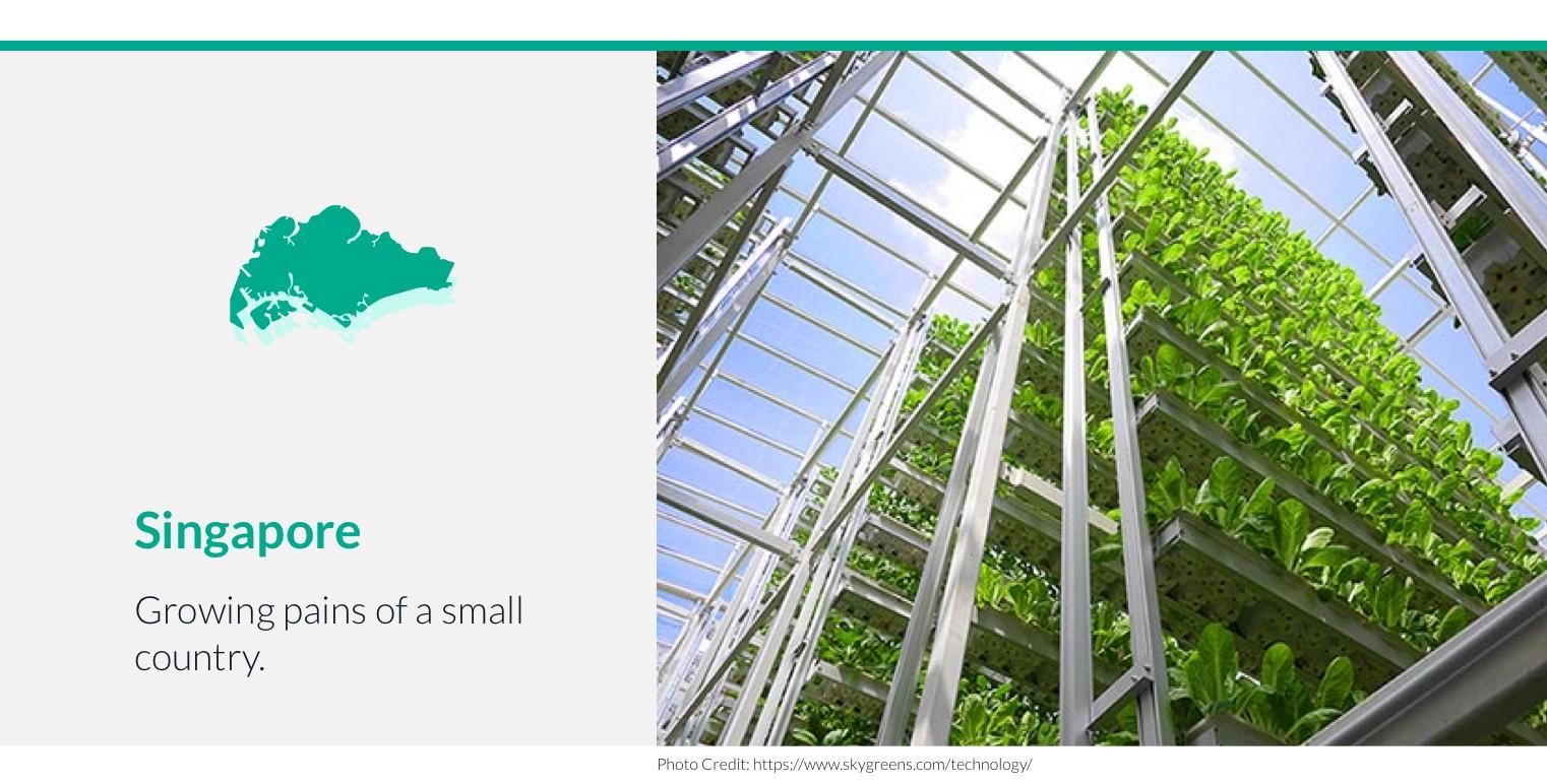 singapore vertical farming.jpeg