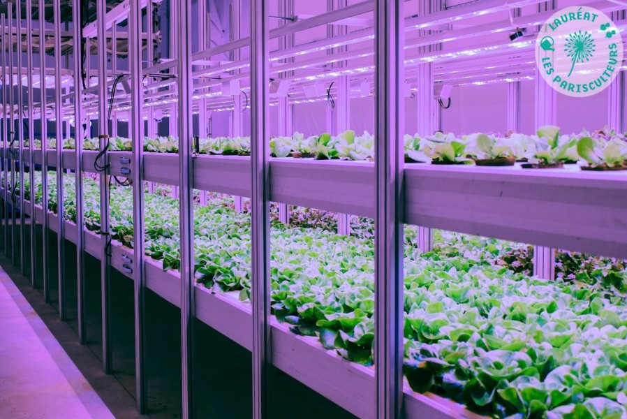 The first underground vertical farm in Paris, located in an old metro station. Project led by HRVST dans le Métro, laureates of Parisculteurs season 2.